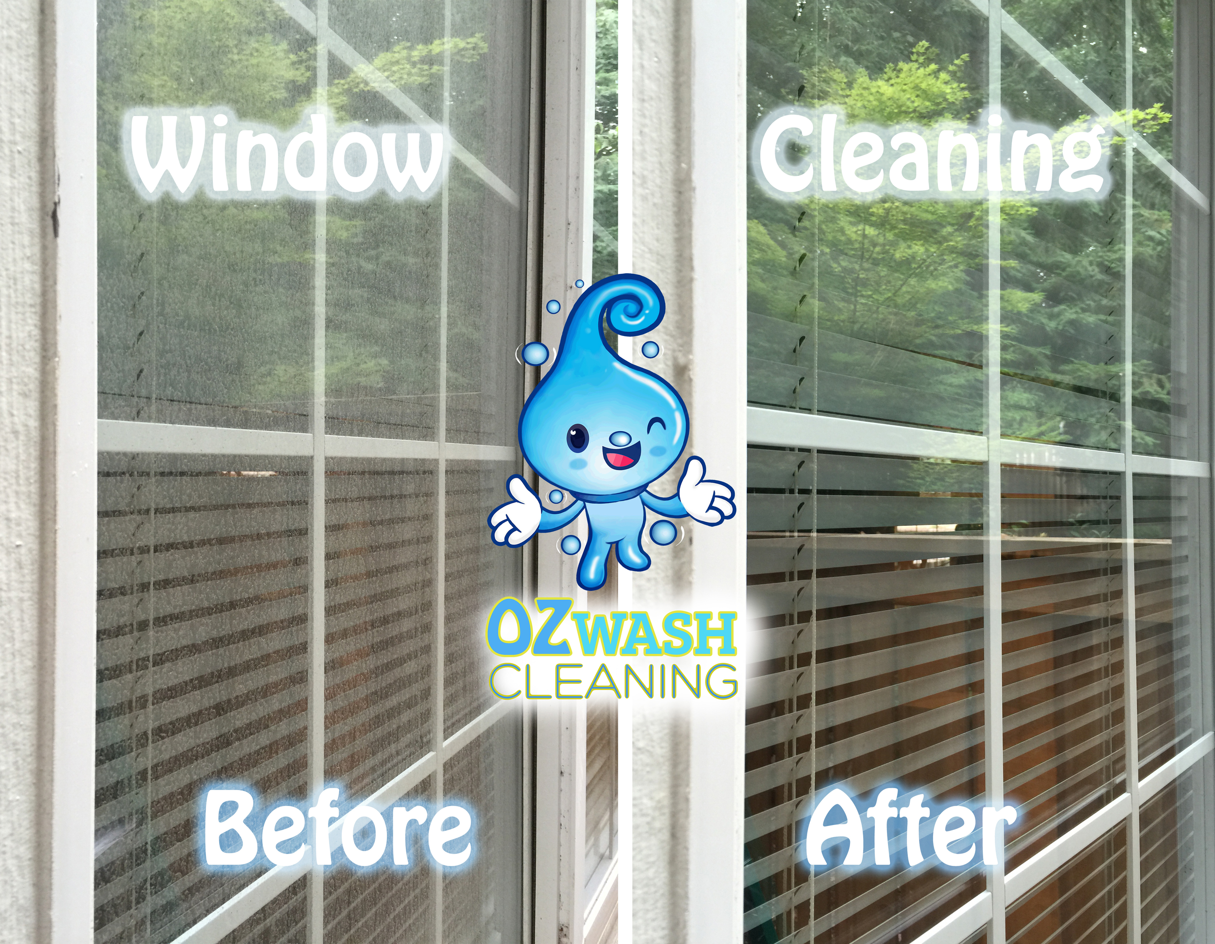 windowcleaning6.jpg