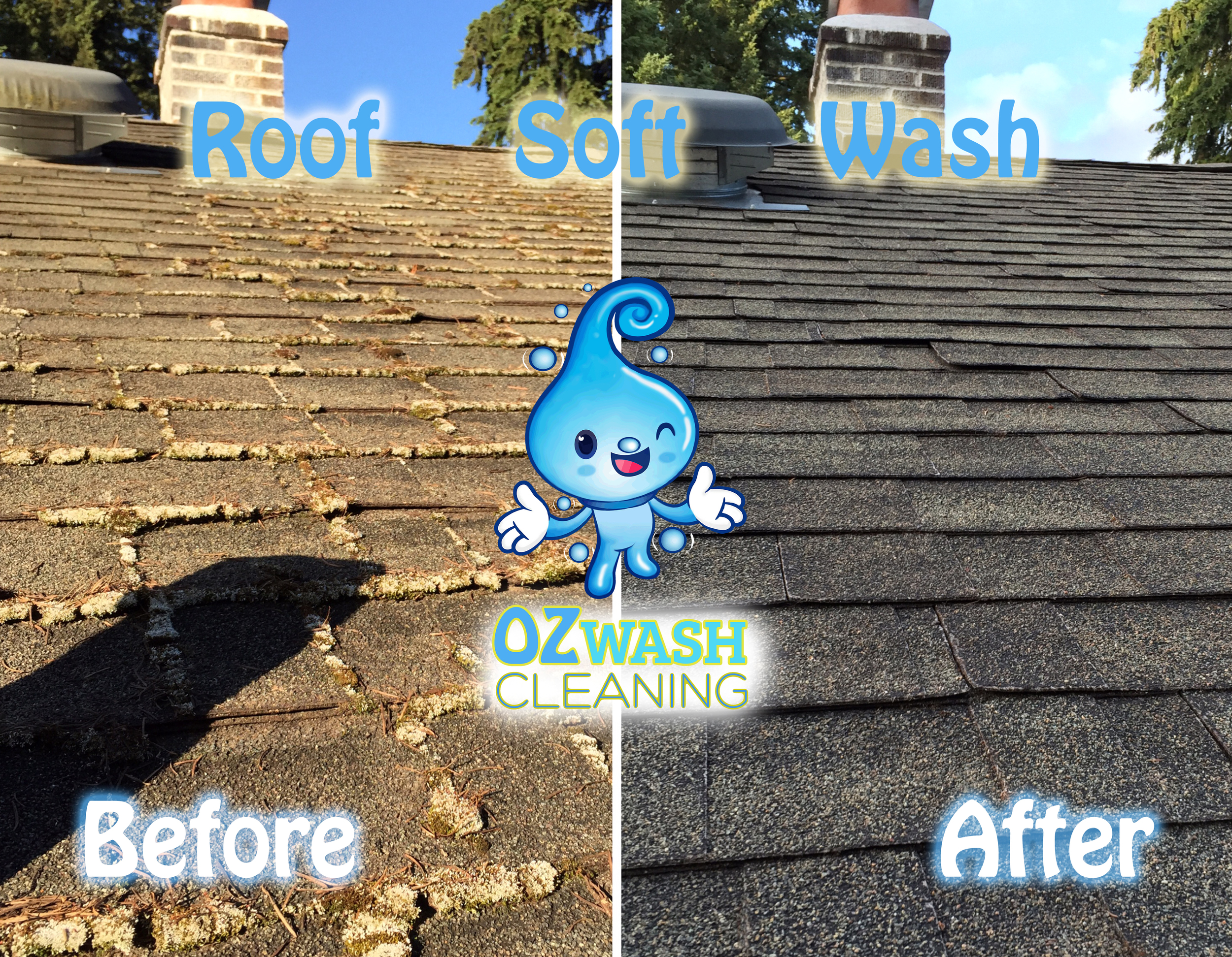 roofsoftwash12.jpg