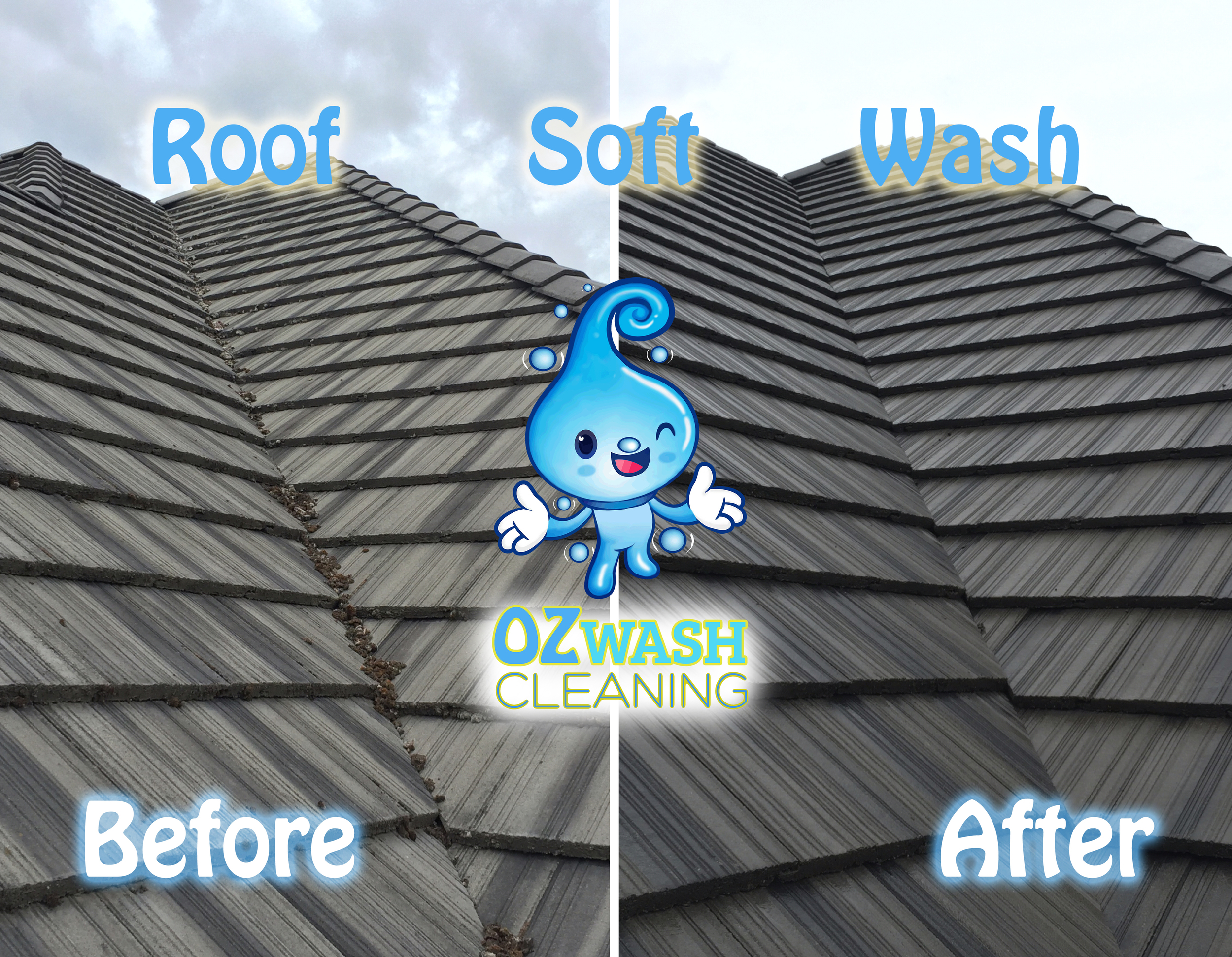 roofsoftwash6.jpg