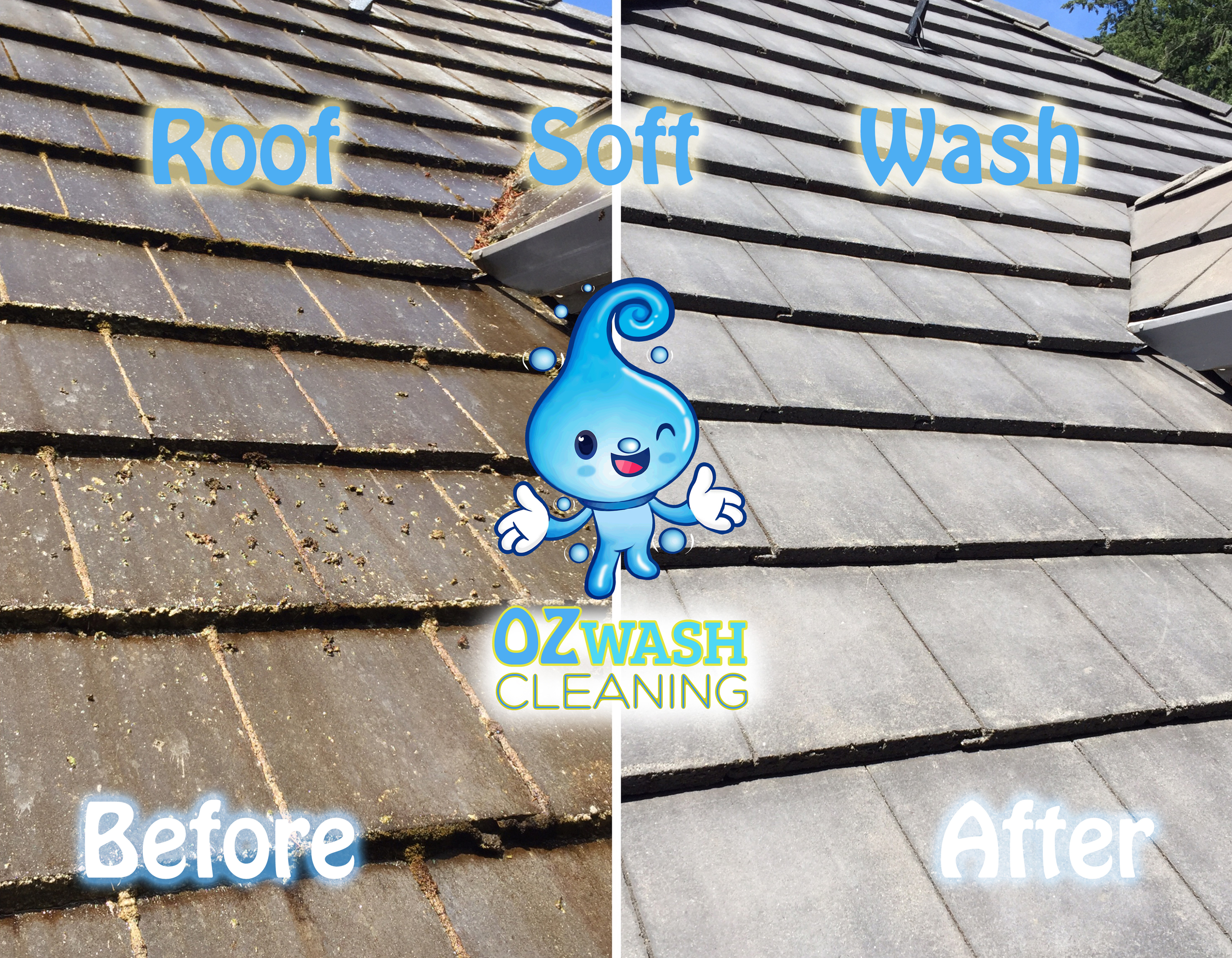 roofsoftwash15.jpg