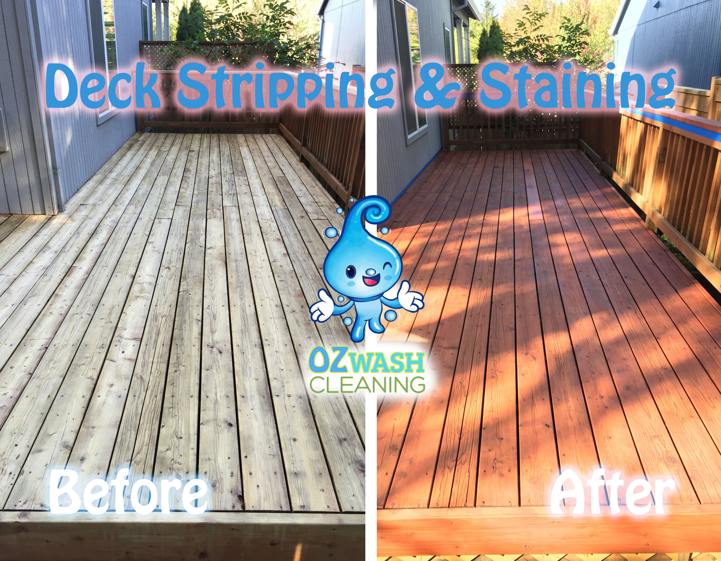 DeckReviving&Staining9.jpg
