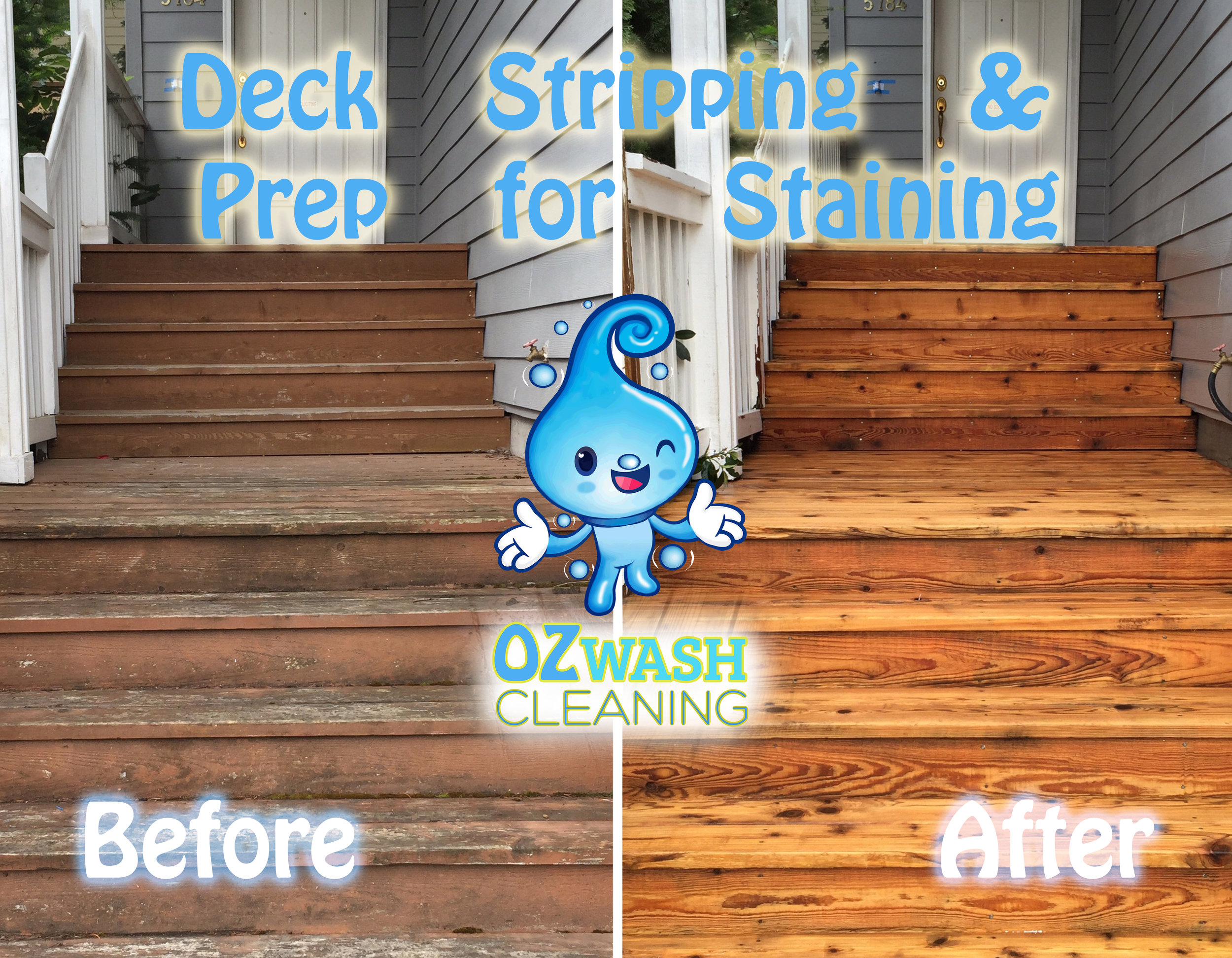 DeckReviving&Staining7.jpg