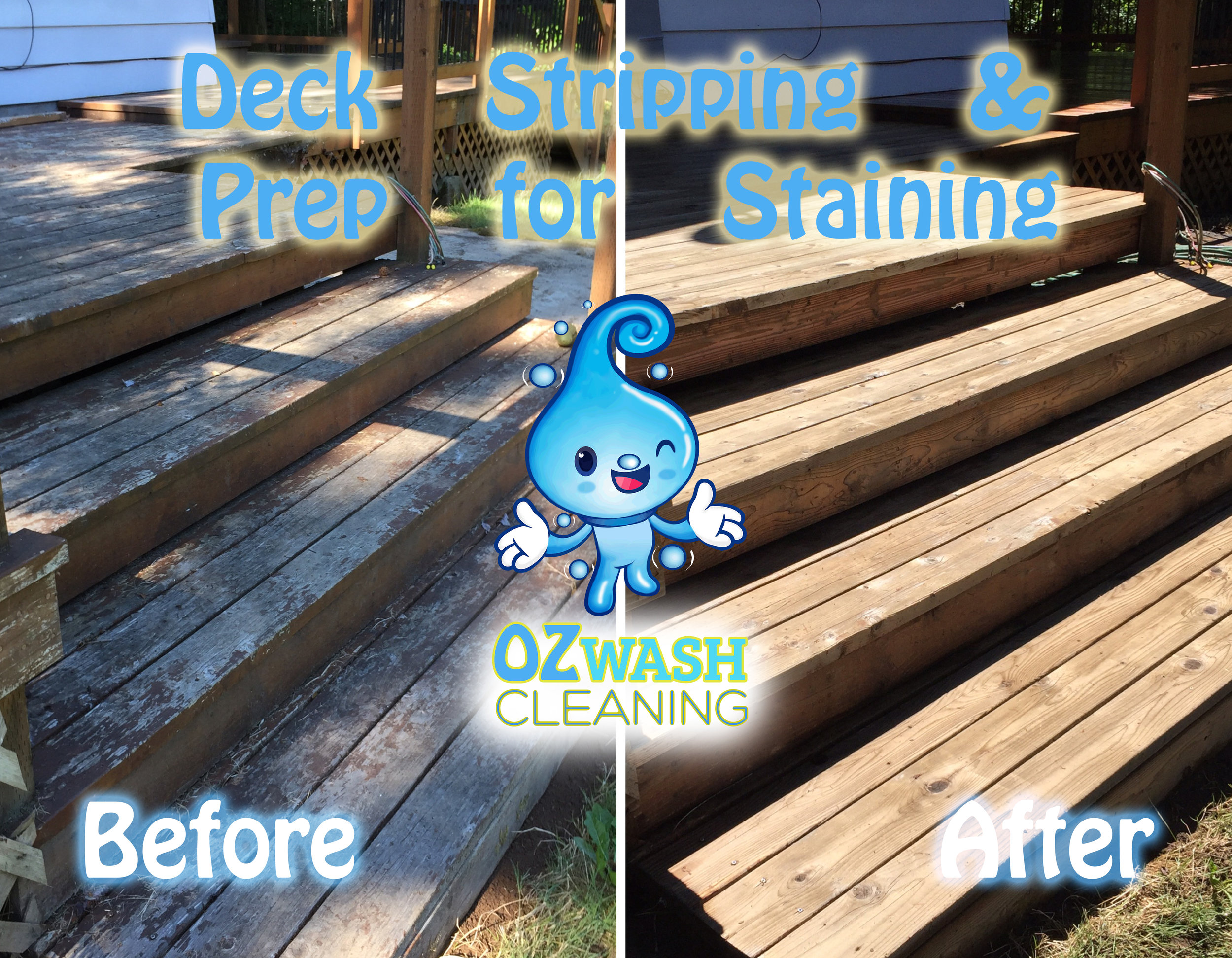 DeckReviving&Staining5.jpg
