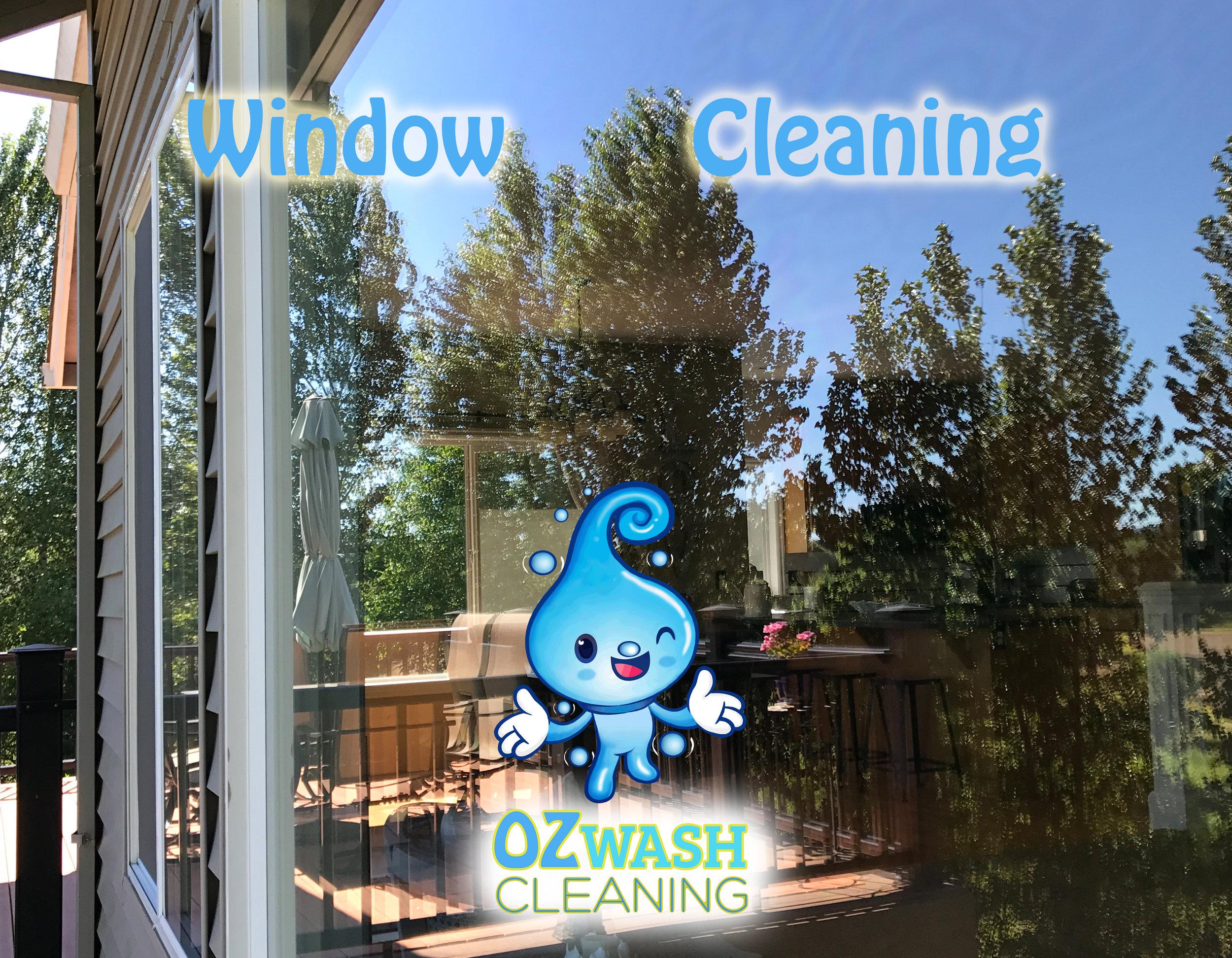 WindowCleaning9.jpg