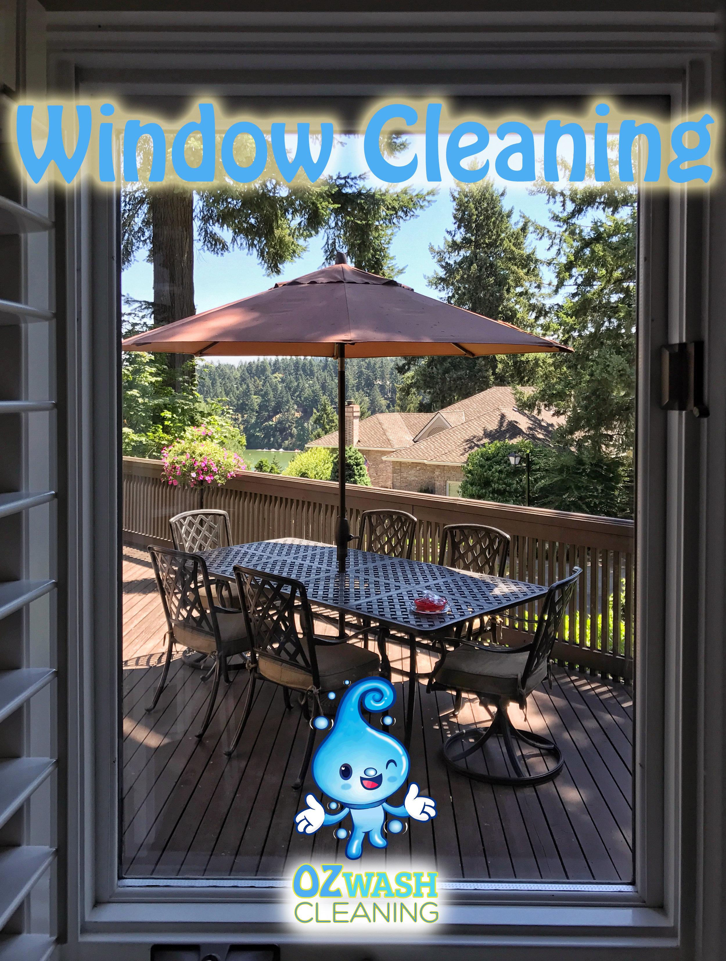 WindowCleaning8.jpg