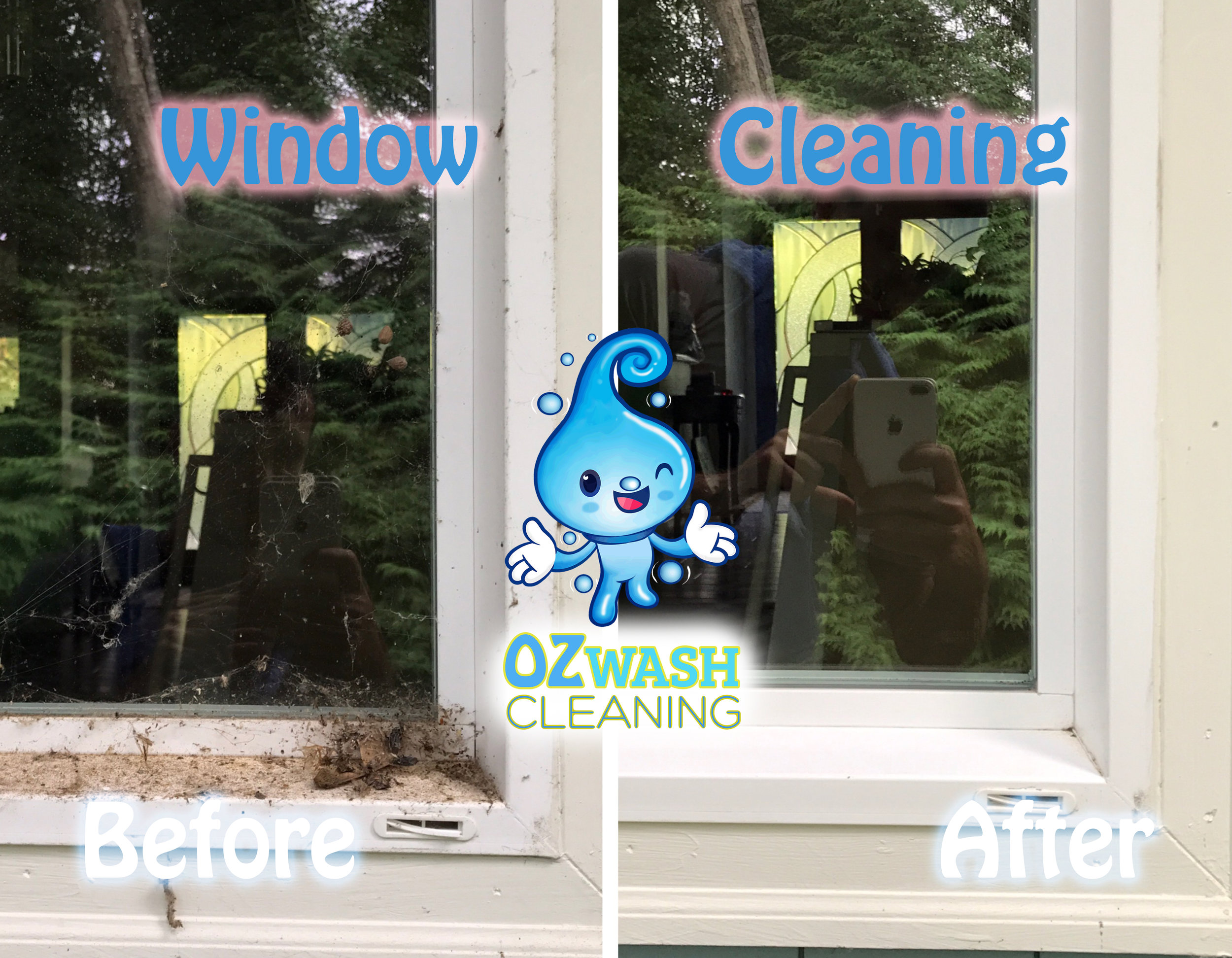 WindowCleaning7.jpg