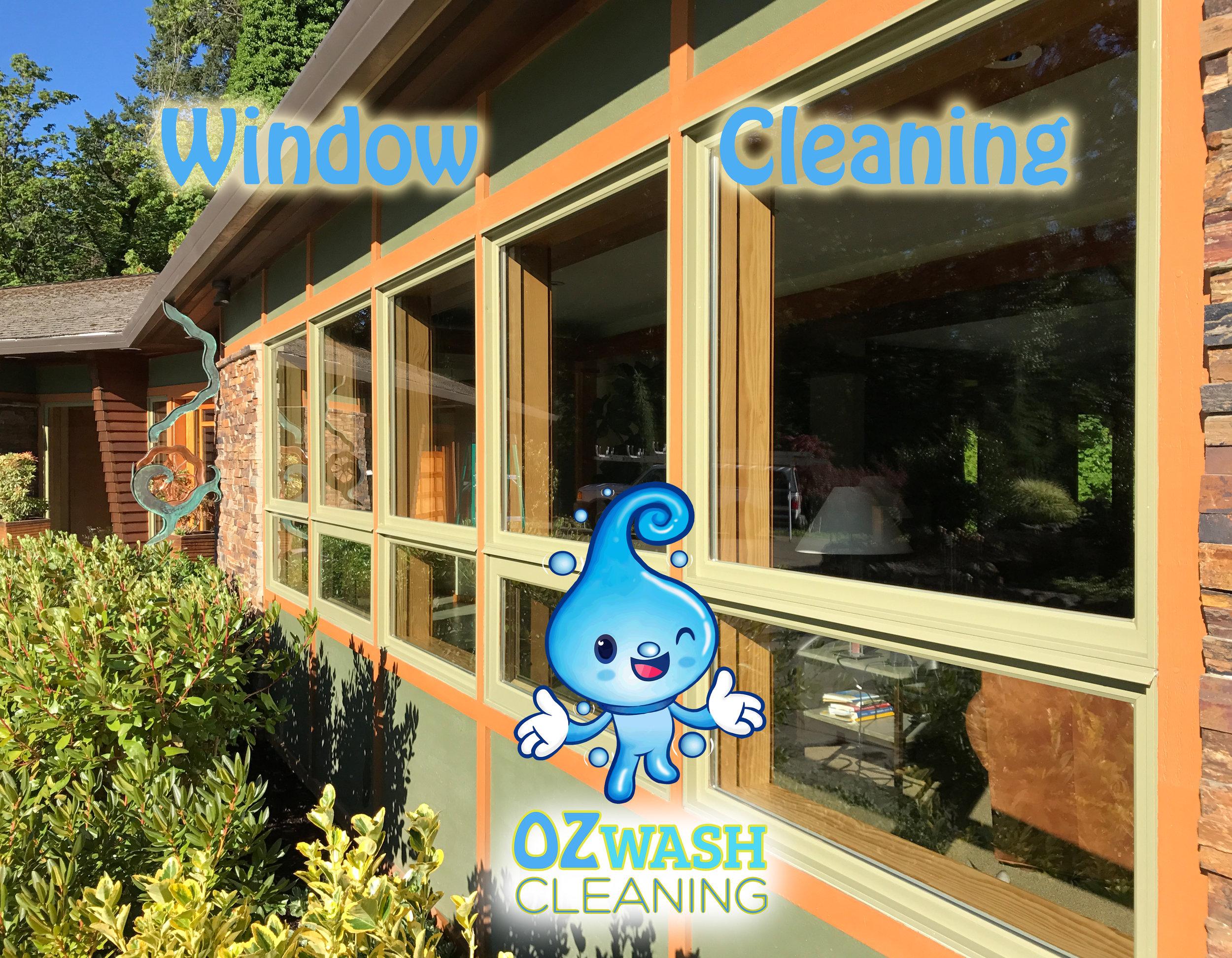 Window Cleaning1.jpg