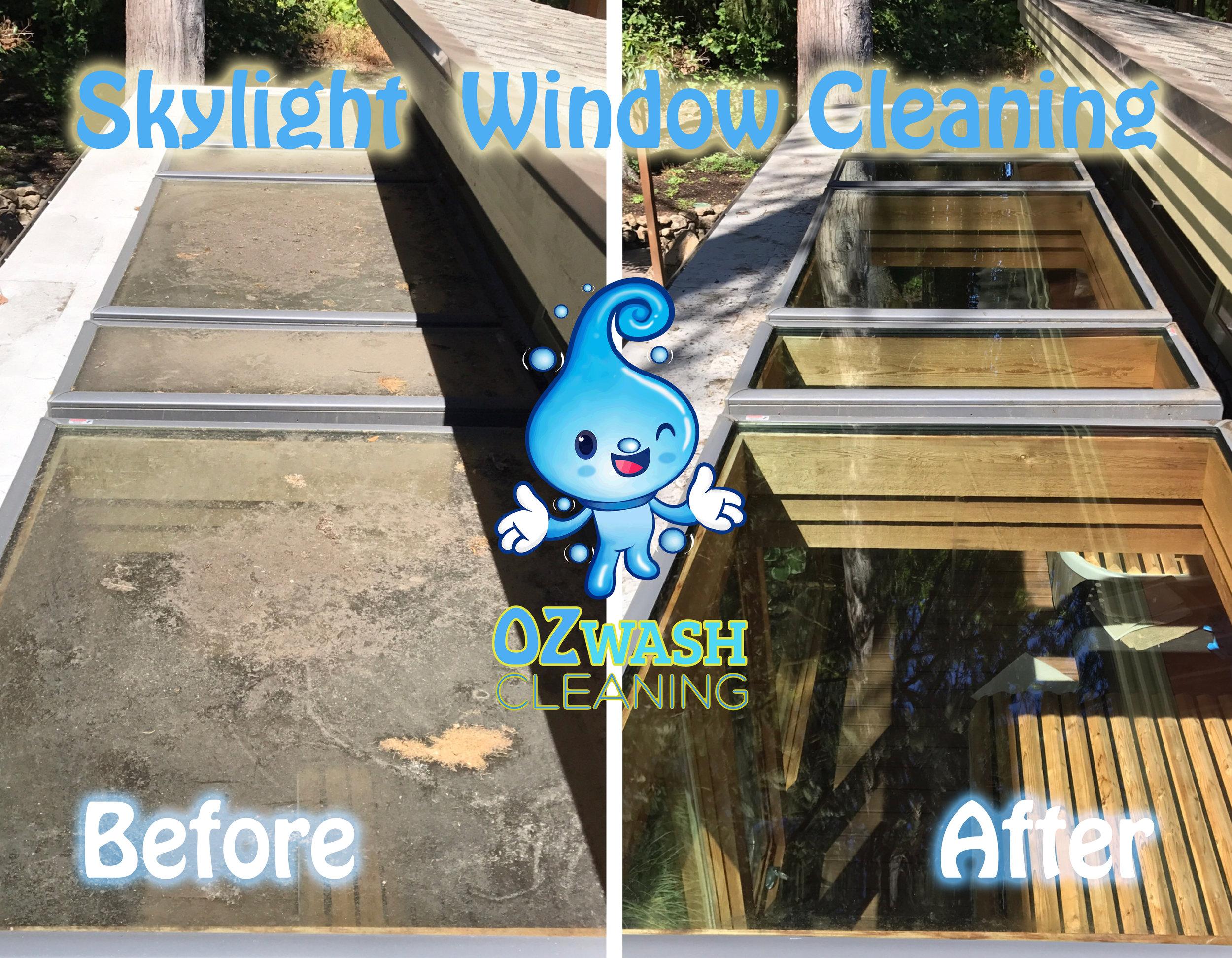 Skylight Cleaning.jpg