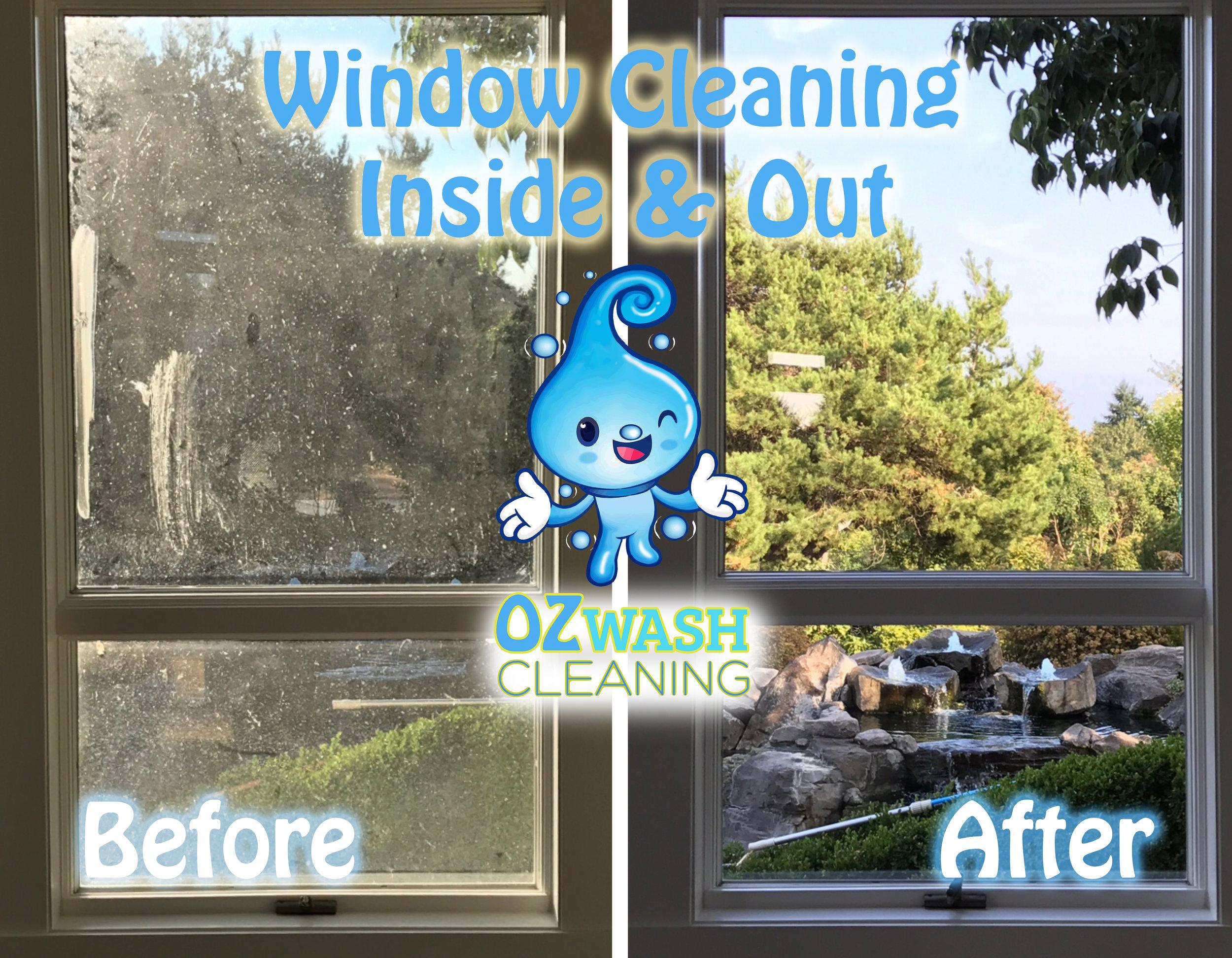 WindowCleaning3.jpg
