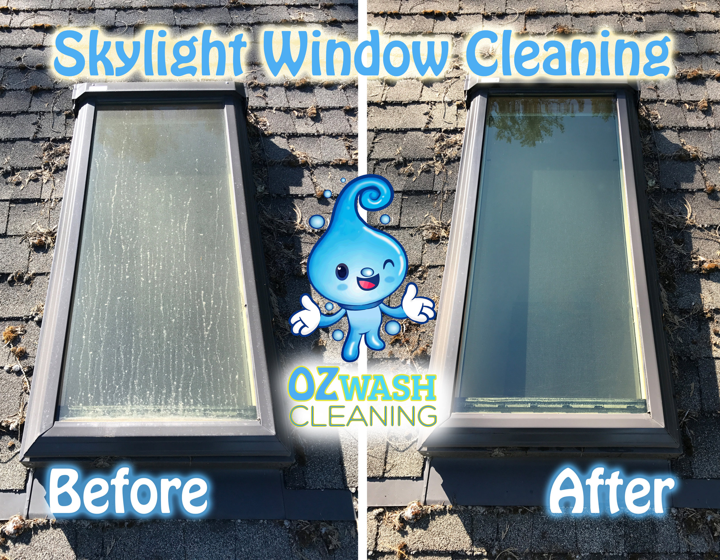 WindowCleaning5.jpg