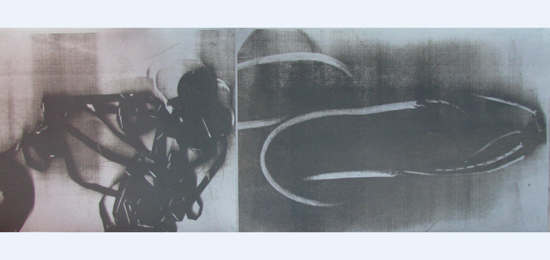 """HONORABLE MENTION  - Carrie Iverson   """"Evidence""""   Toner Lithograph"""