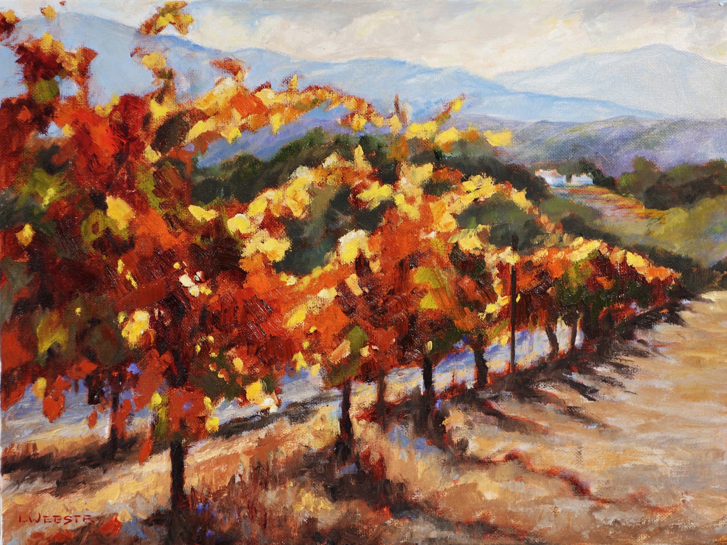 THIRD PLACE  - LaRhee Webster | Sebastopol Vines