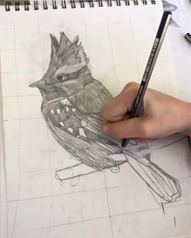 140931_111520_drawing mania2_med_med.jpg