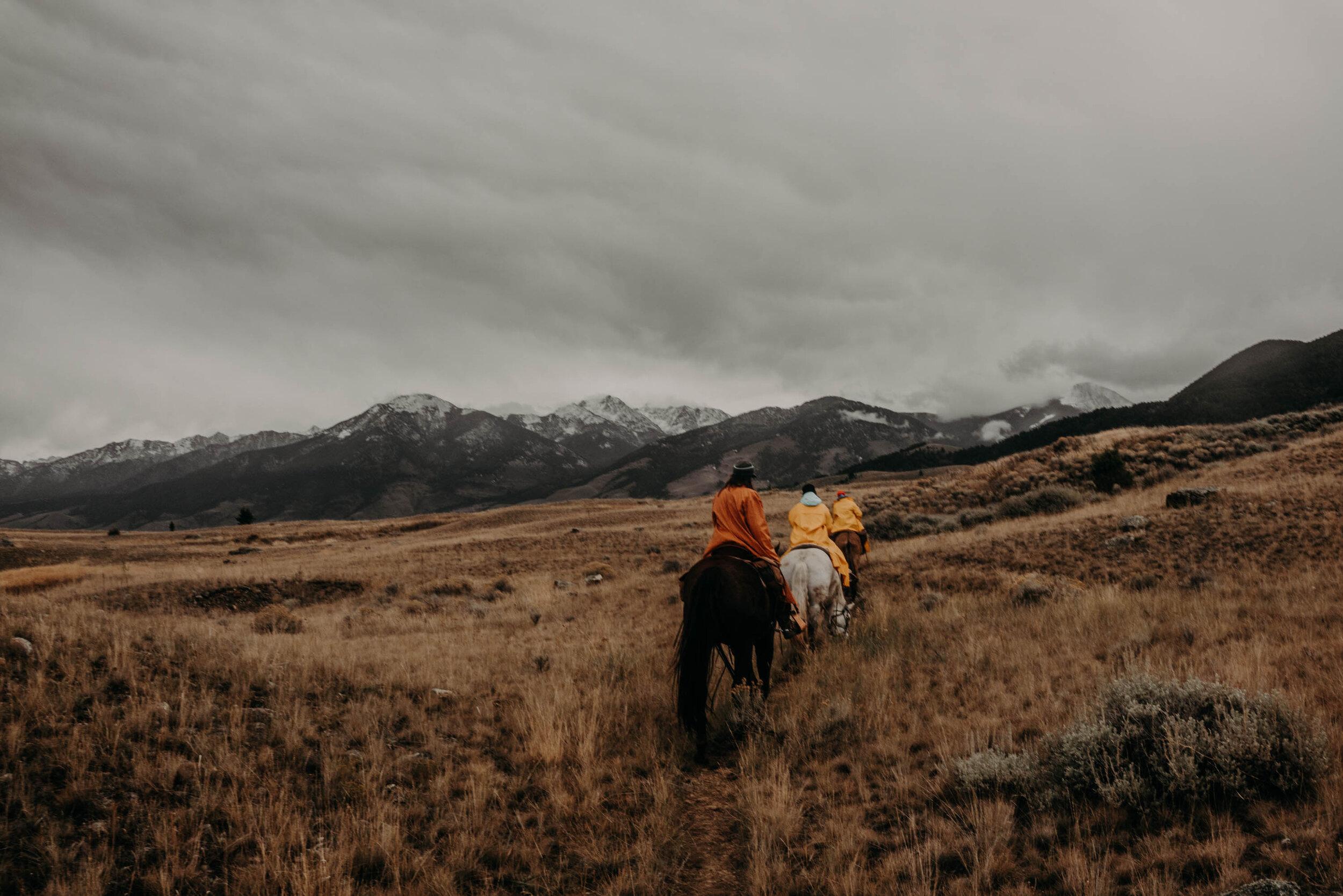 montana-8281-2.jpg