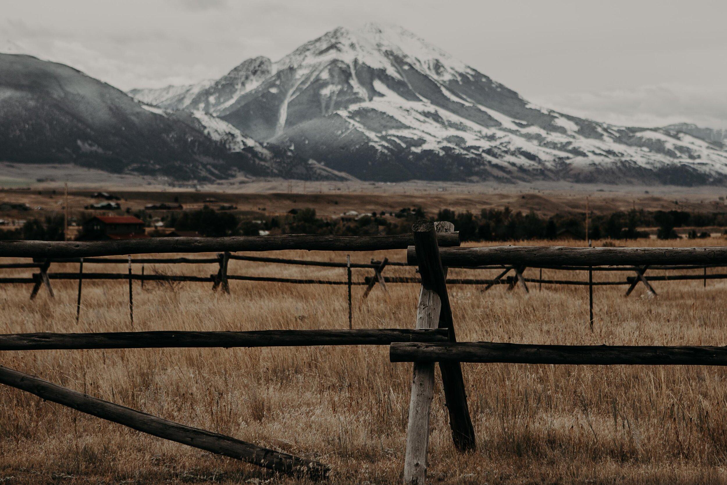montana-1395.jpg