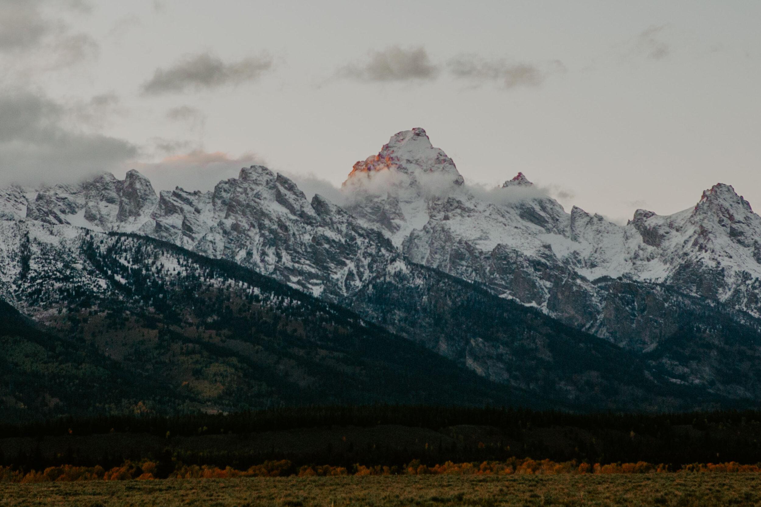 montana-0353.jpg