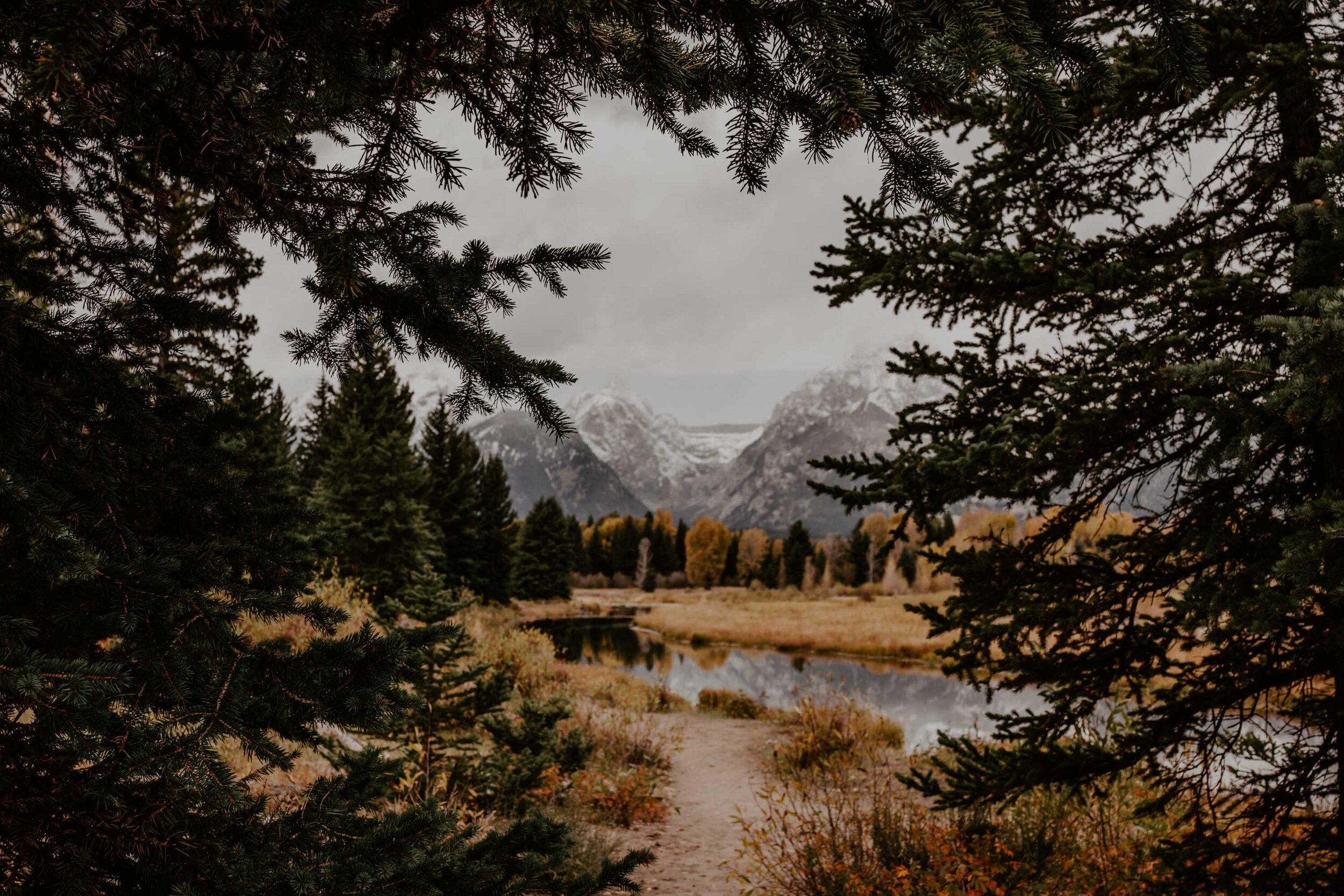 montana-8103.jpg