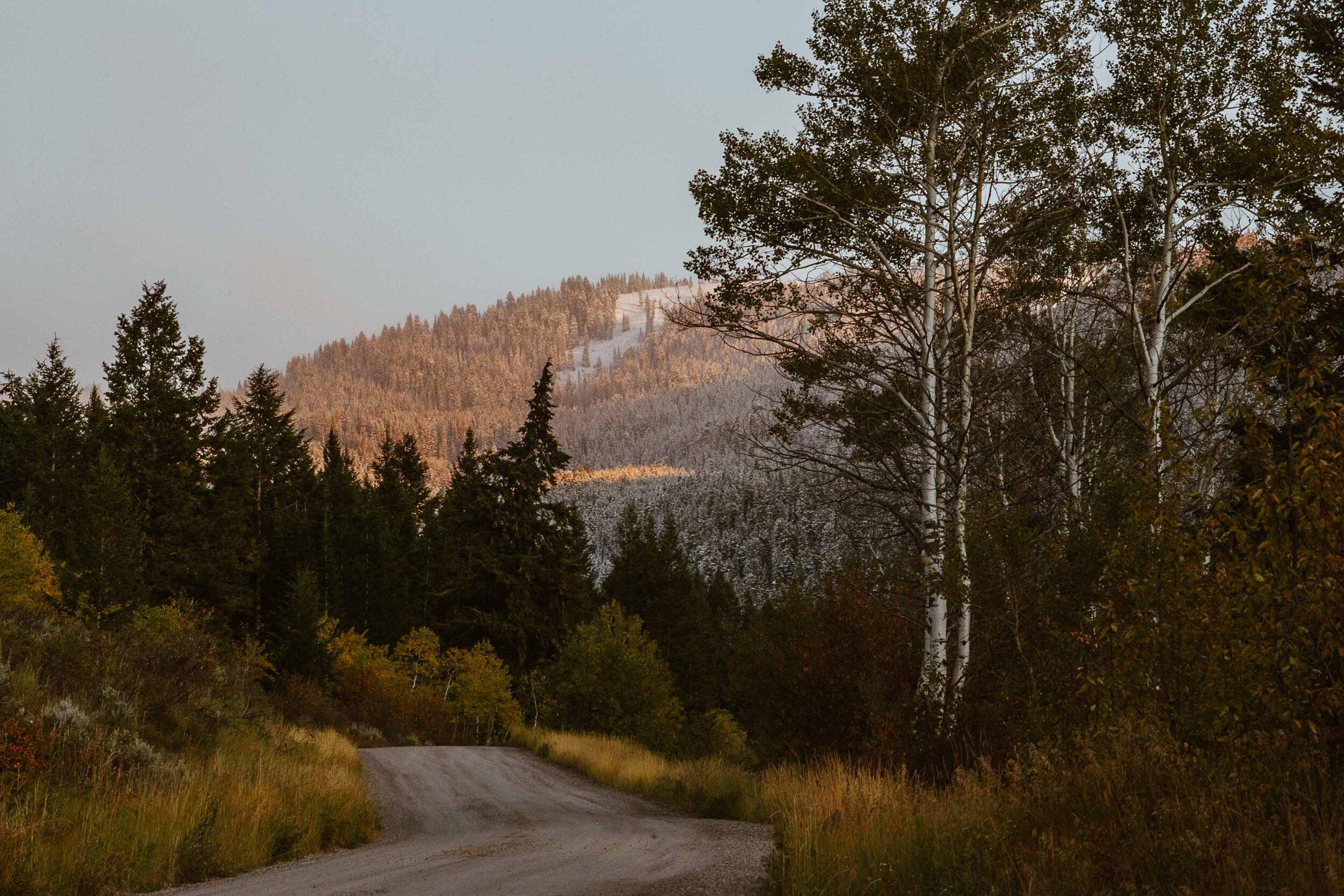 montana-9885.jpg