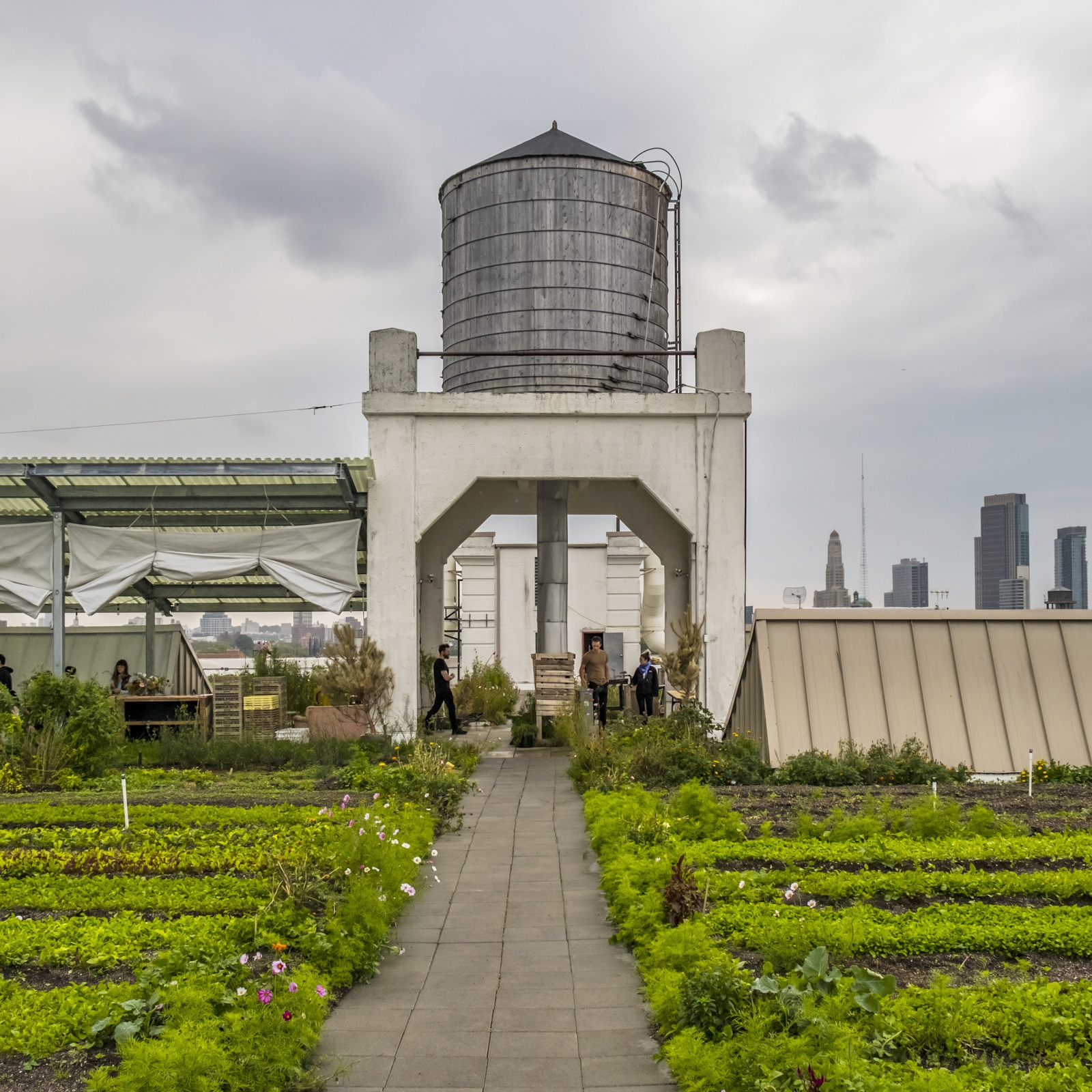Venue: The Brooklyn Grange