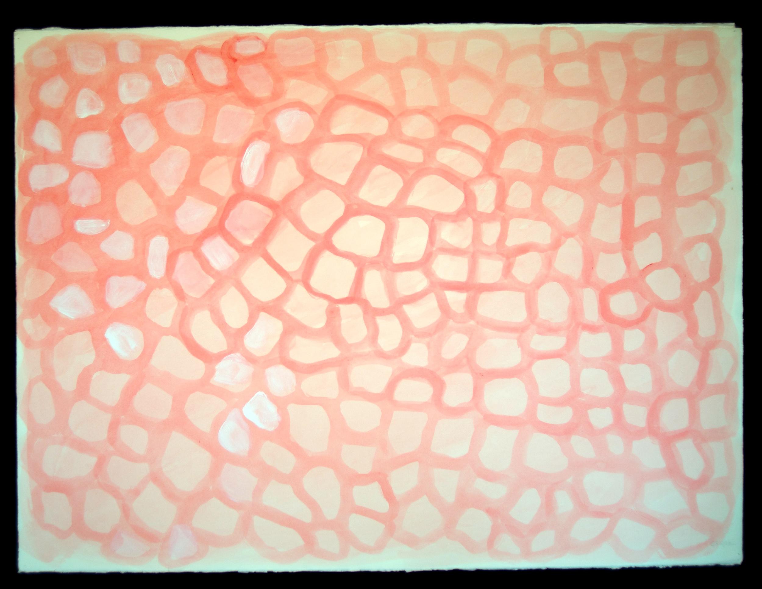 Mandala #4  acrylic on paper 22in x 30in