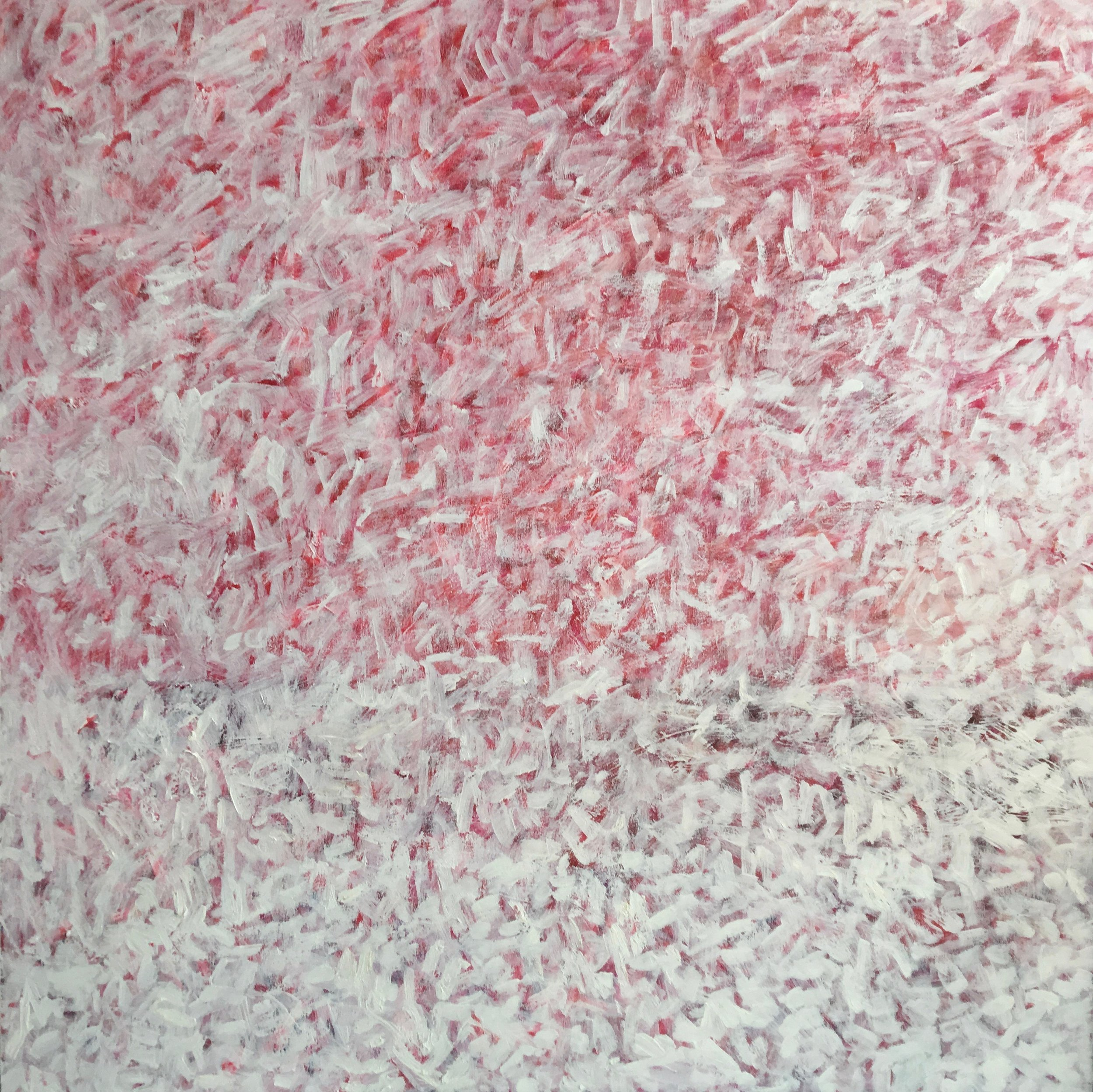 "White on Red  oil on canvas 36""x36"""