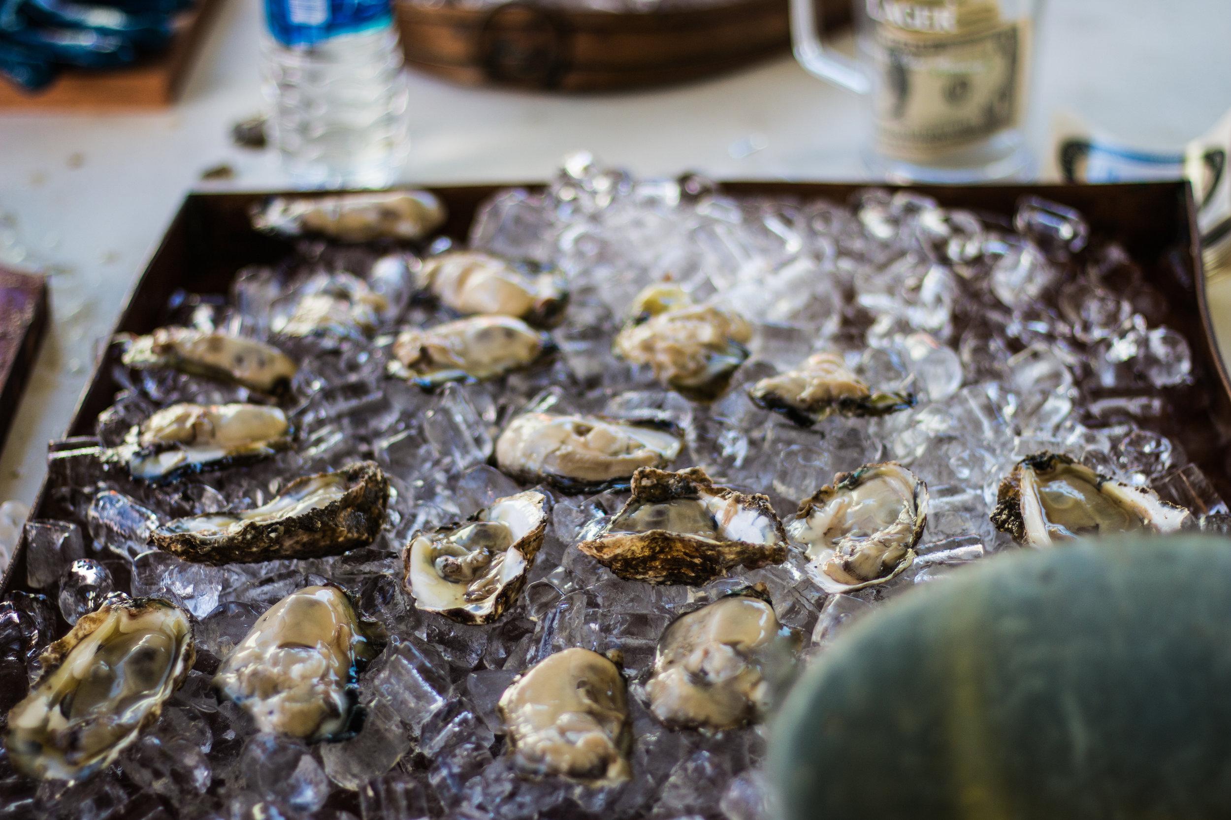 Oyster Fest-9.jpg