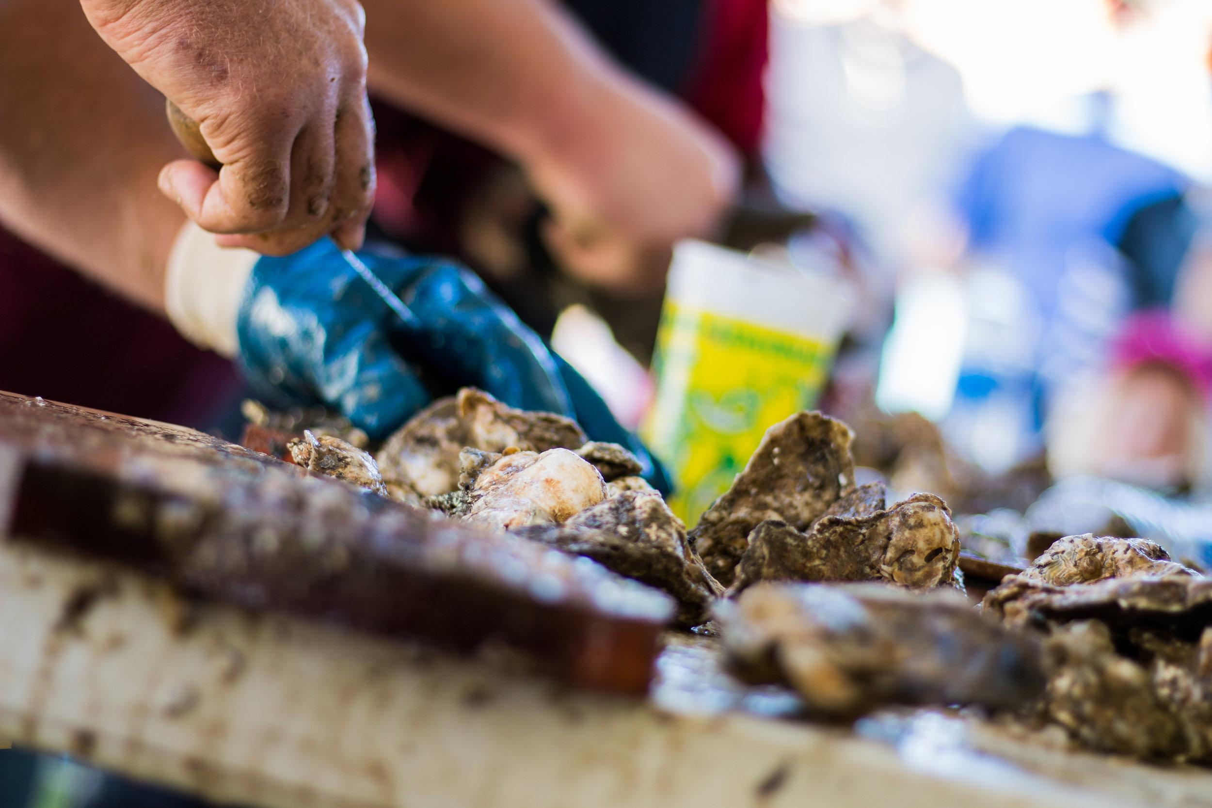 Oyster Fest-15.jpg