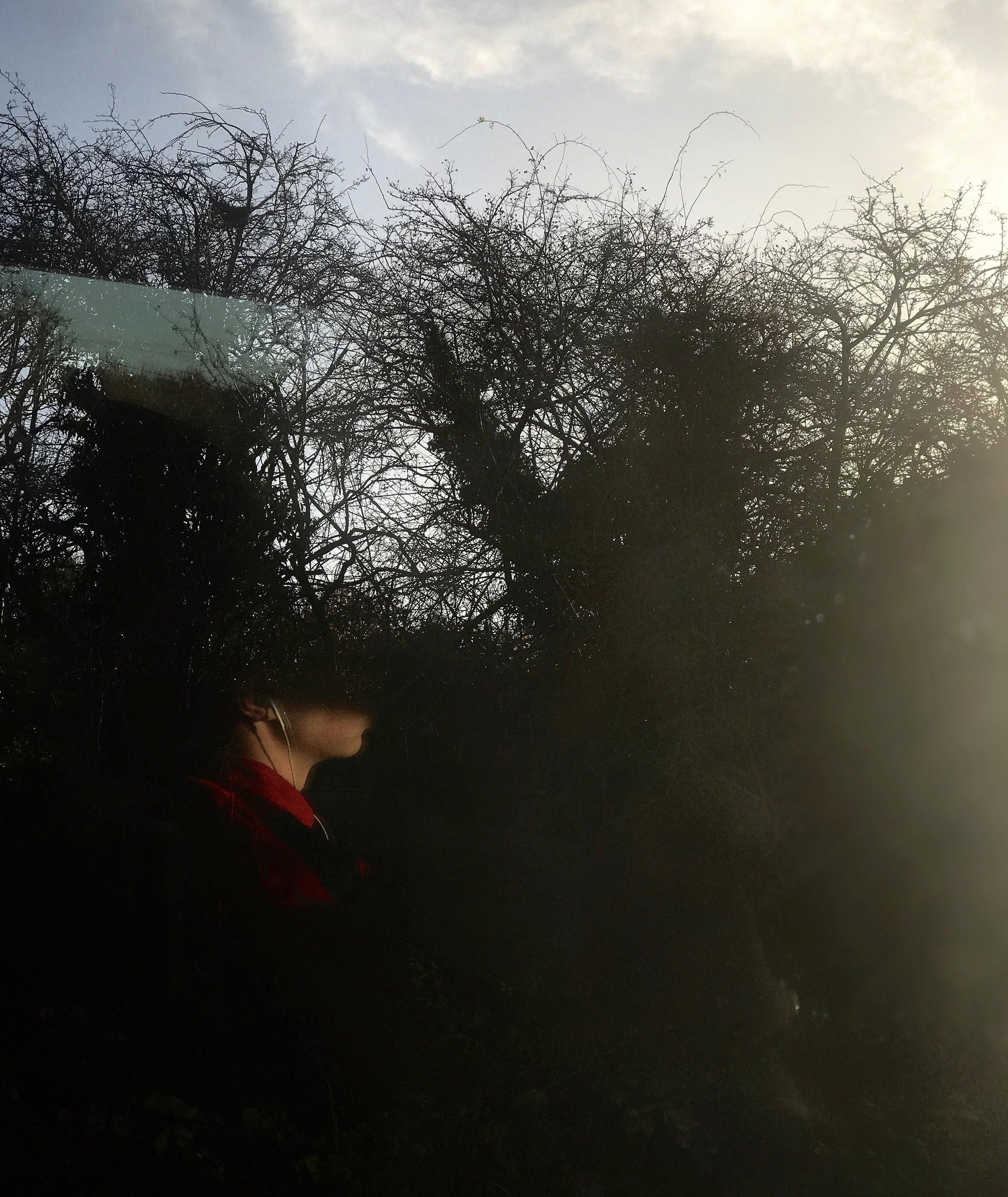 Train_Cardiff_Head_Trees.jpg