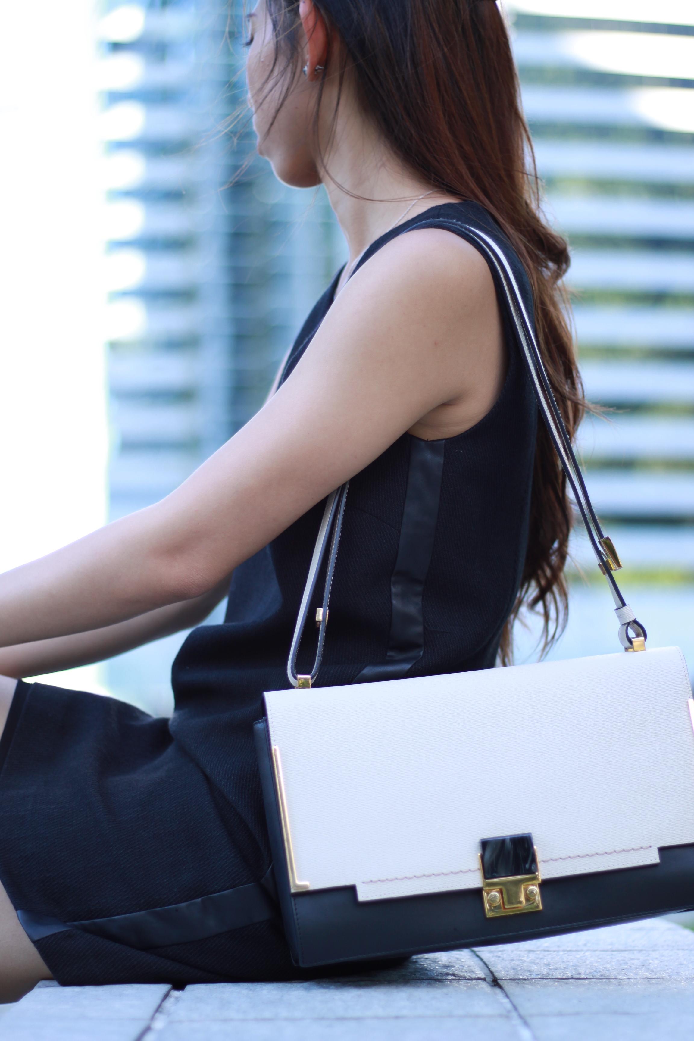 Black dress /  Zara  black pumps /  Lanvin  Partitian Two-tone shoulder bag