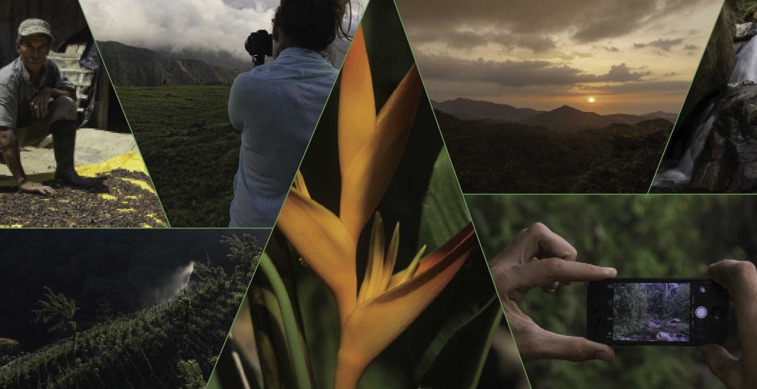 FotoTrails_A3-Poster-Bird-LR copy.jpg