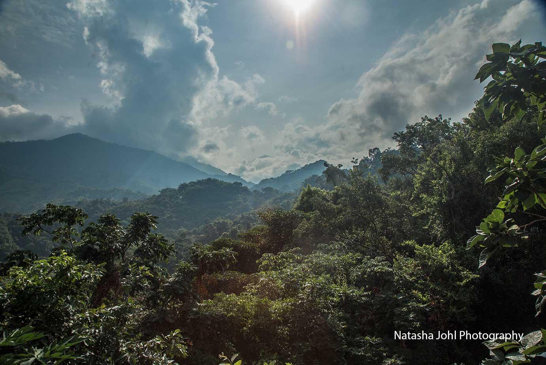 Vista-sol-de-minca-natasha-johl.jpg
