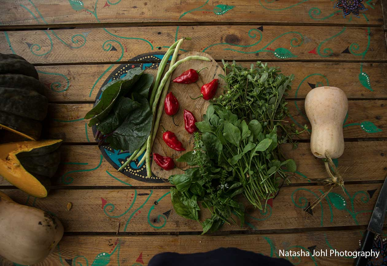 Fresh-natasha-johl.jpg