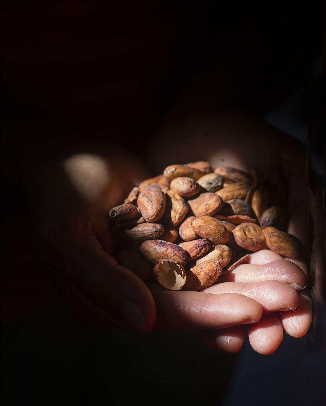 Hands-cacao.jpg