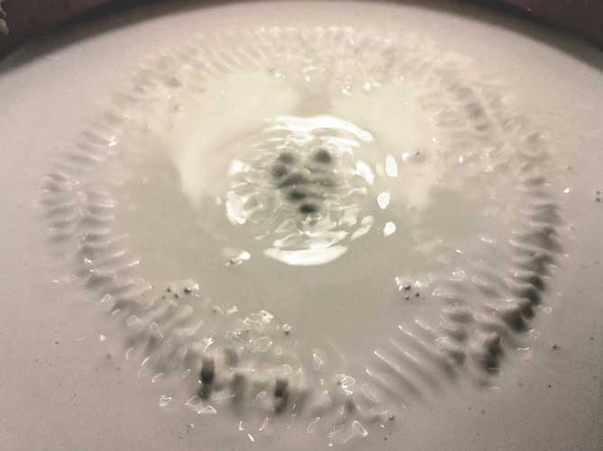 porcelain-cymatics-4.jpg