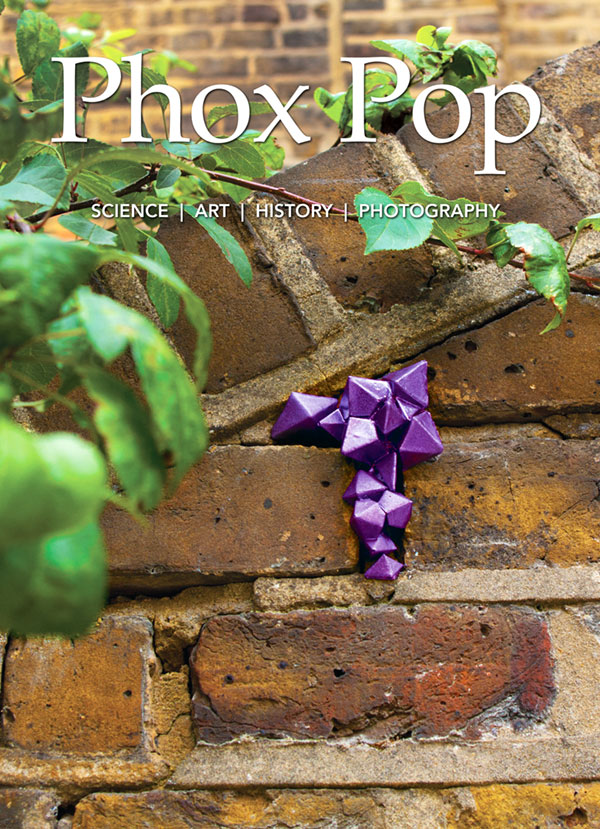 Phox-Pop-Issue-2-Cover_web.jpg