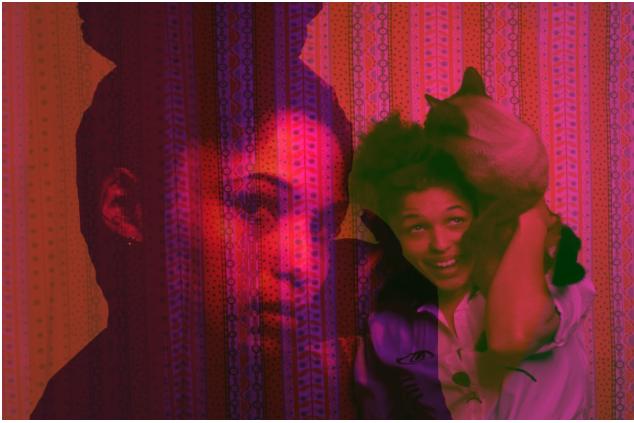 Self portrait photo collage of Ari with her twenty-eight toed siamese cat Sheldon. Aug. '15 . Photo Cred: Ariel Lauren