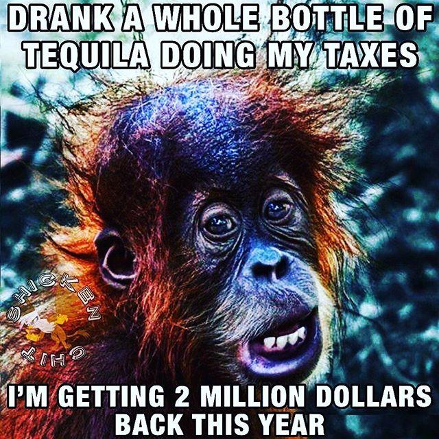 #taxseason #elfogonerotequila #thebesttequila #extraanejo #premiumtequila #artisanaltequila #smallbatch #sipdontshoot