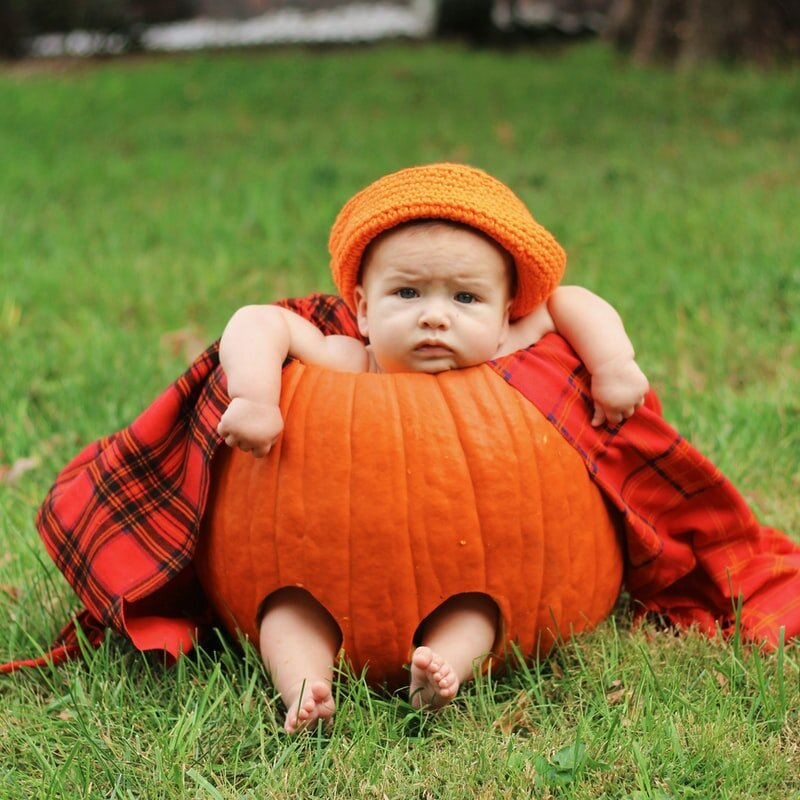 baby in a pumpkin.jpeg