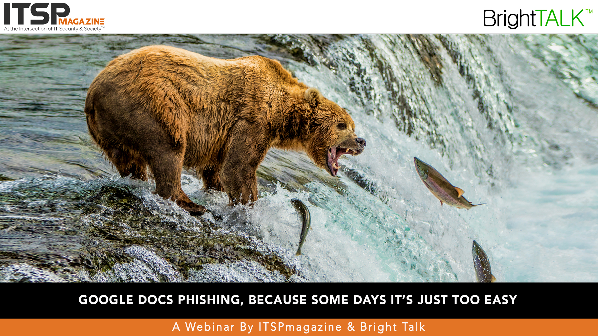 Google Docs phishing, because some days IT's just too easy.jpg