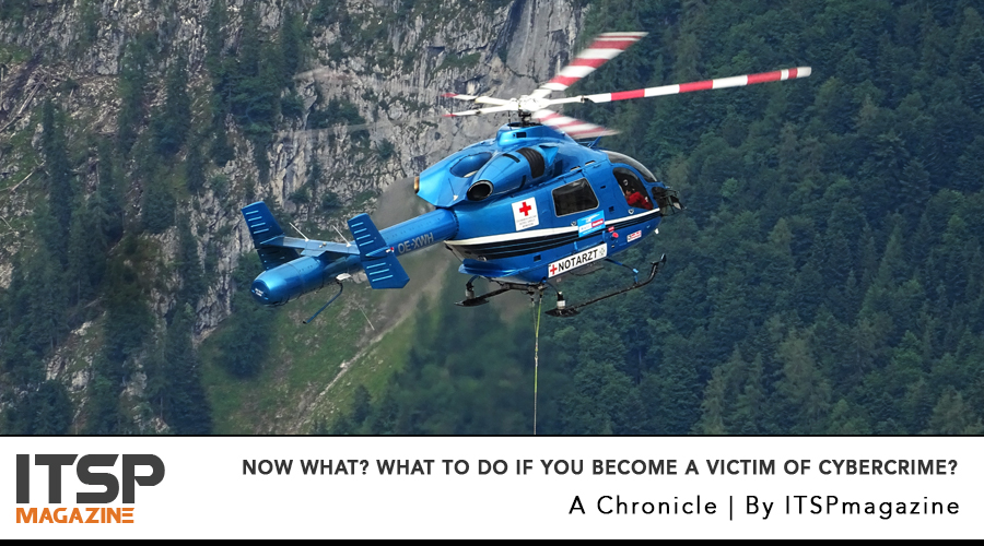 now what? What To Do If You Become A Victim Of Cybercrime?.jpg