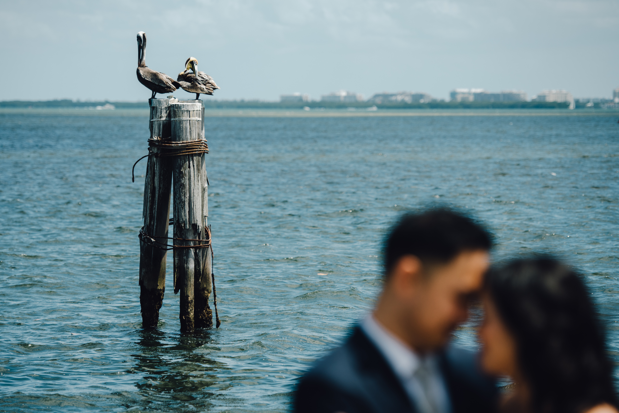 Main and Simple Photography_2016_Wedding_Miami_M+B-627.jpg