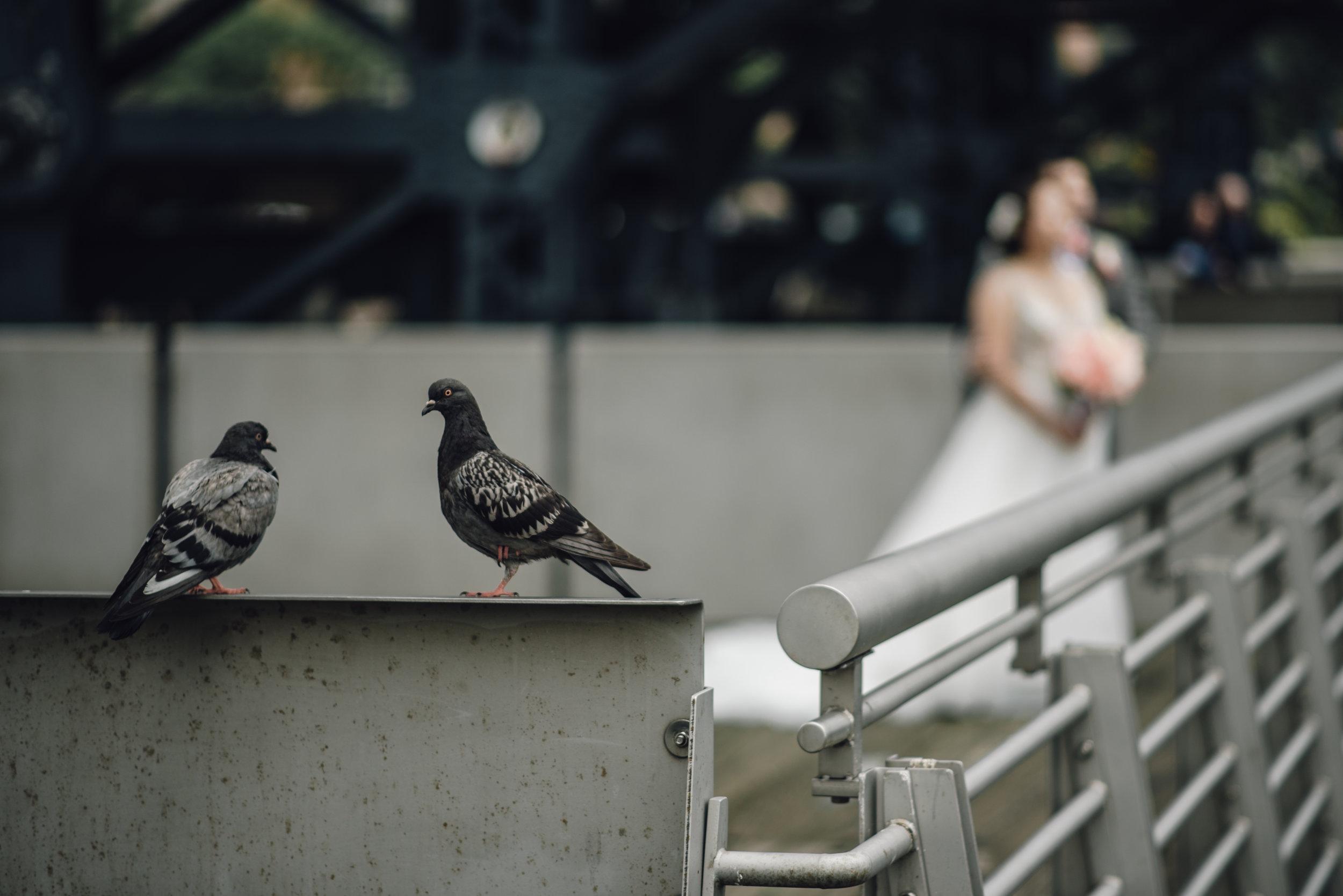 Main and Simple Photography_2017_Weddings_NewYork_TinaJon-561.jpg