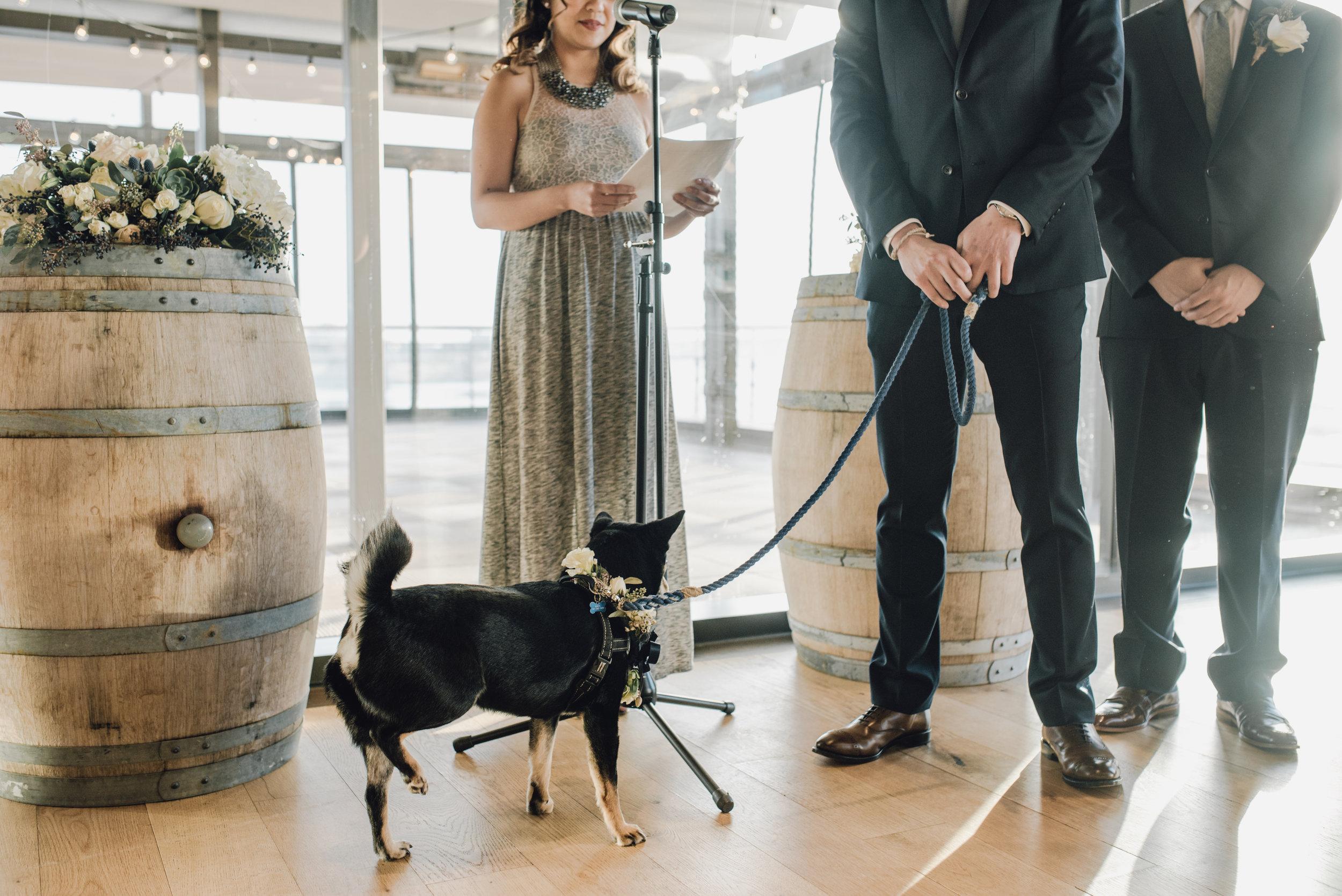 Main and Simple Photography_2018_Weddings_DC_K+T-1028.jpg