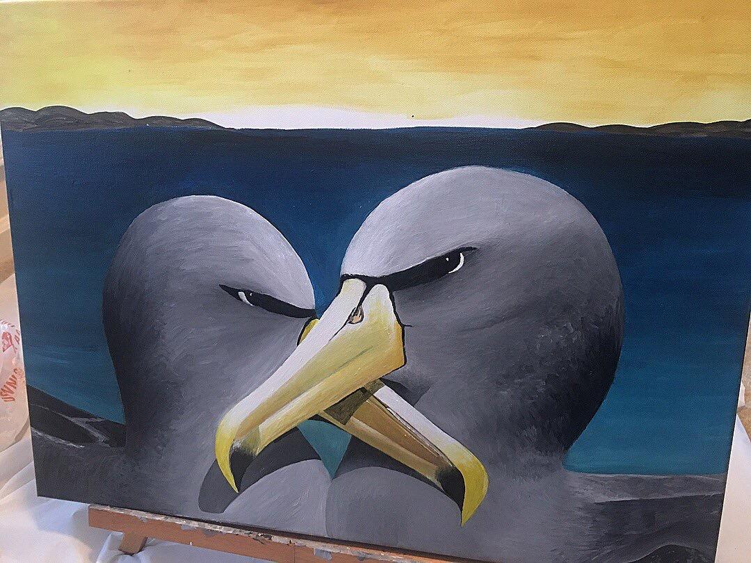 The Buller's Albatross