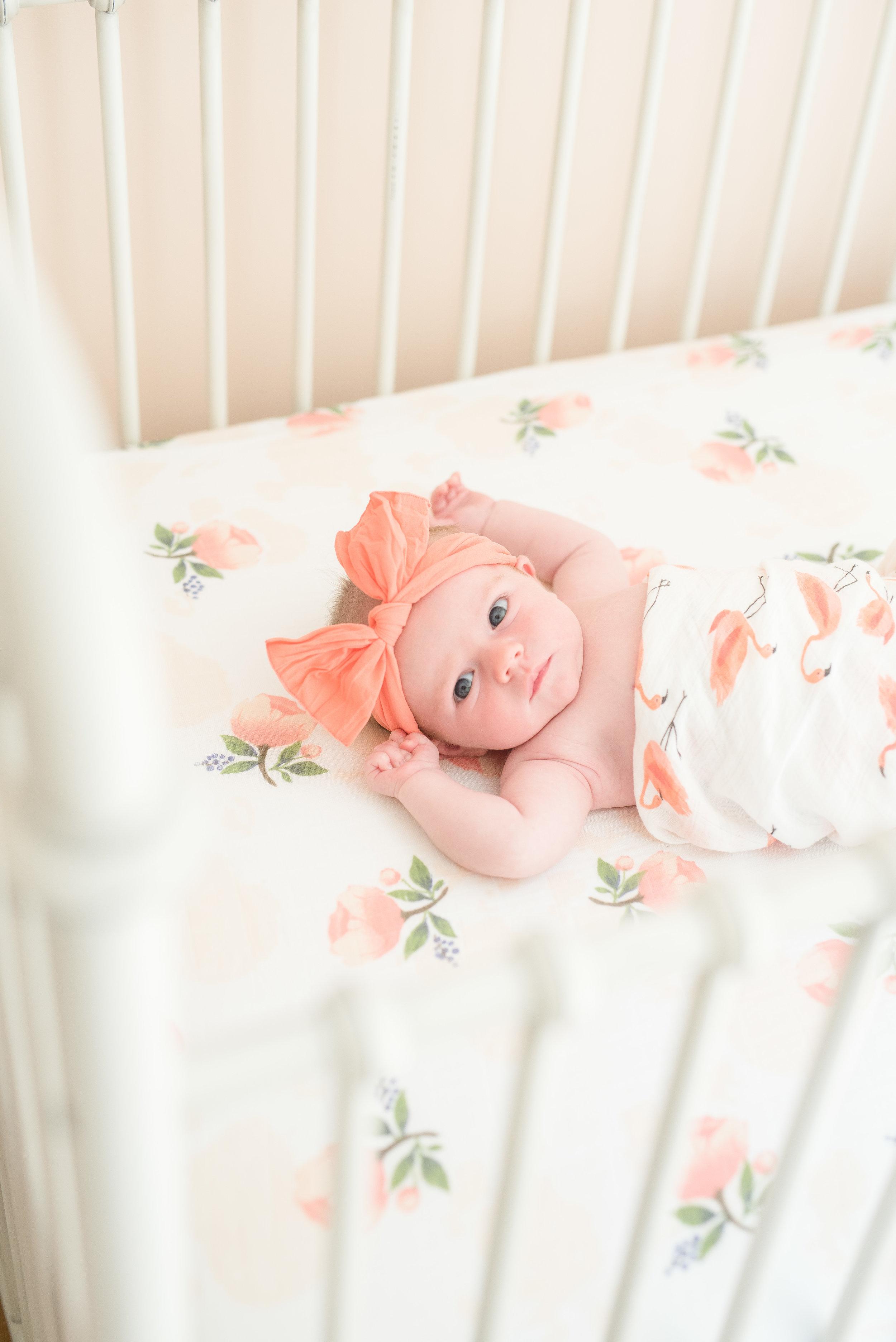 E Brunini newborn 2017 -41.jpg