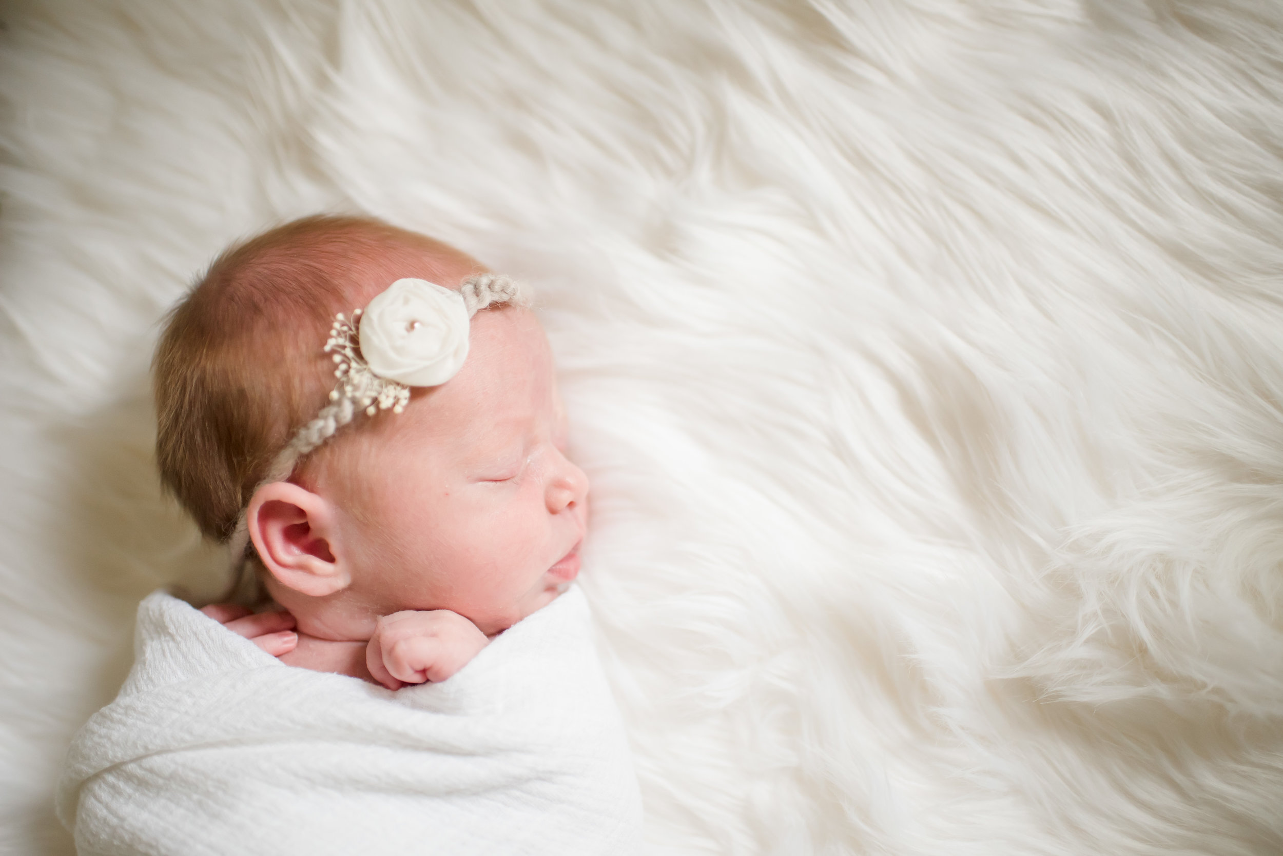 Ellis family newborn-15.jpg