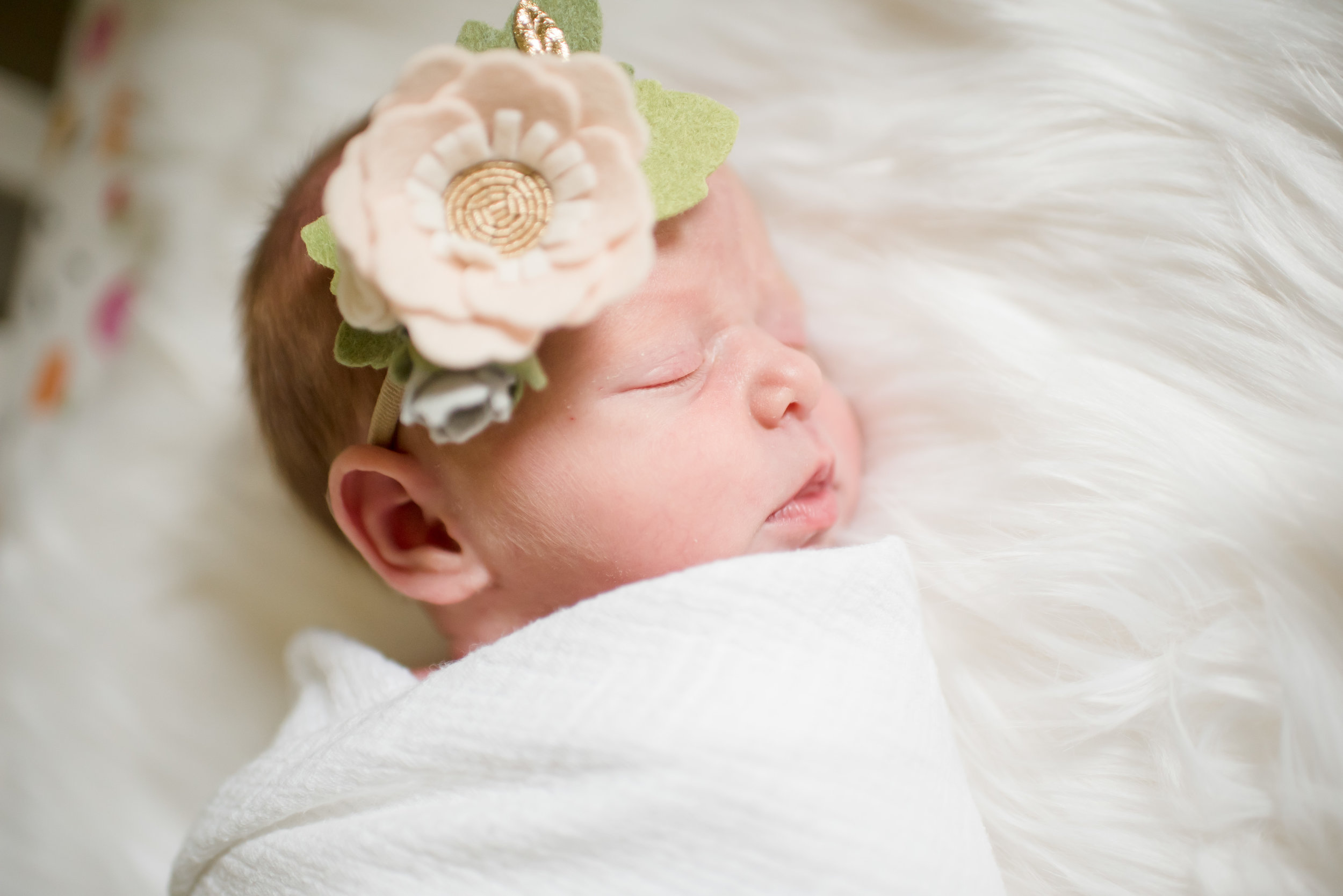 Ellis family newborn-9.jpg