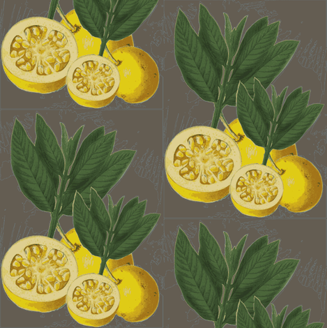italian lemons, mood ring