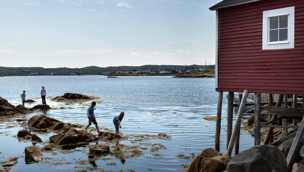 FogoIsland_Landscapes_0718_photo_Alex_Fradkin.jpg