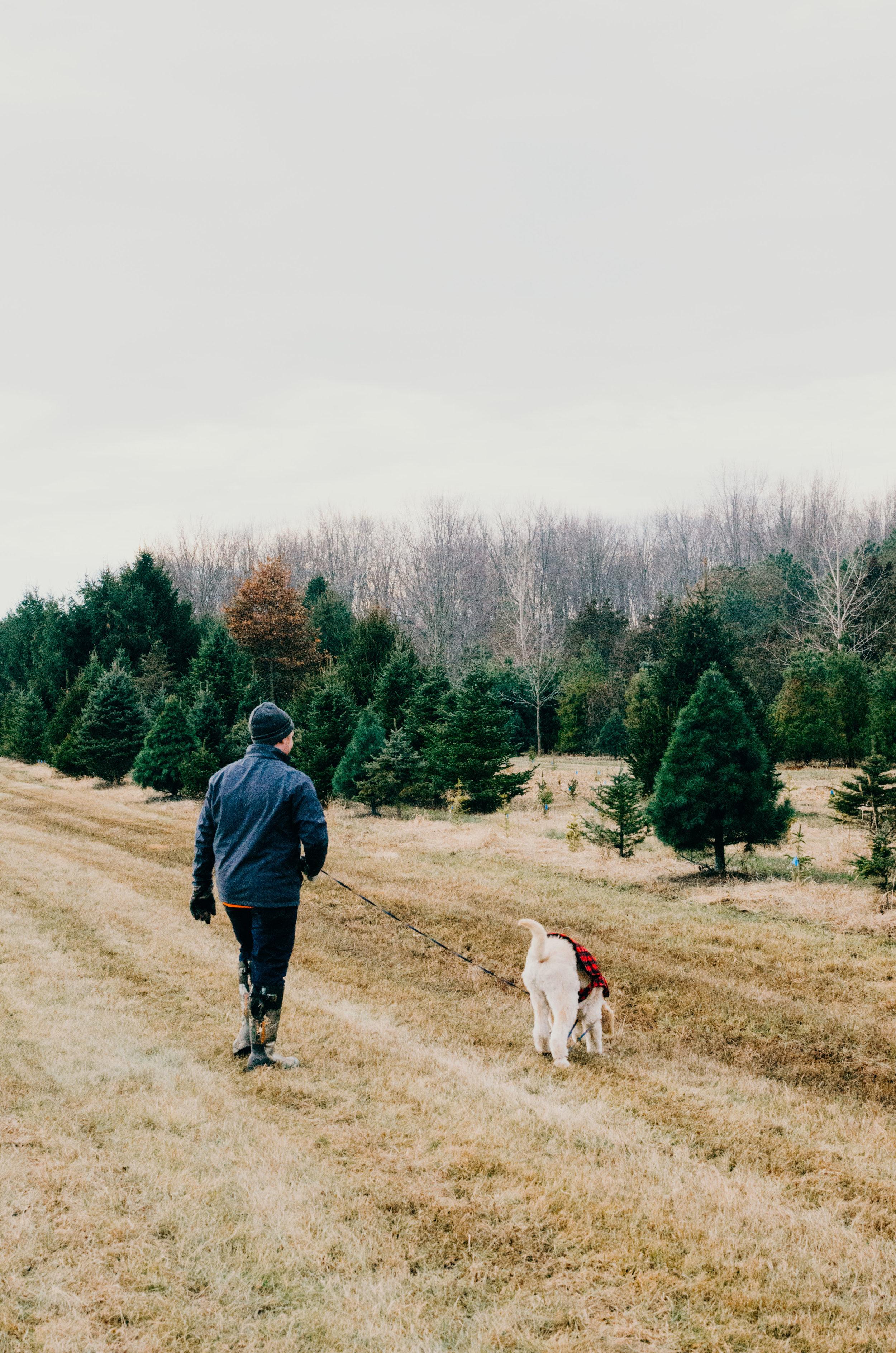 Wendling_Boyd_Tree_Hunt_2017-20.jpg